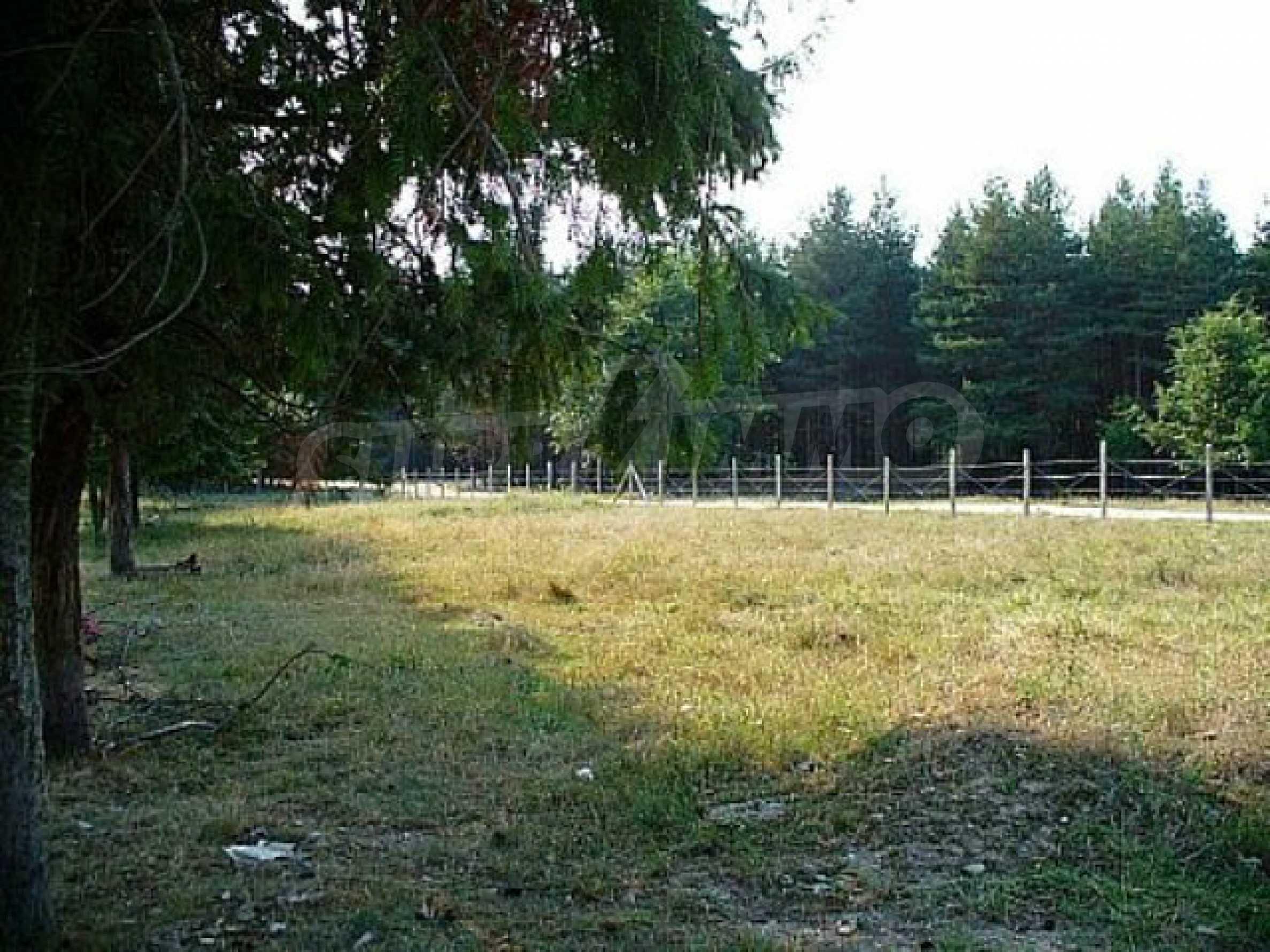Geregeltes Land im Dorf Rudnik 18