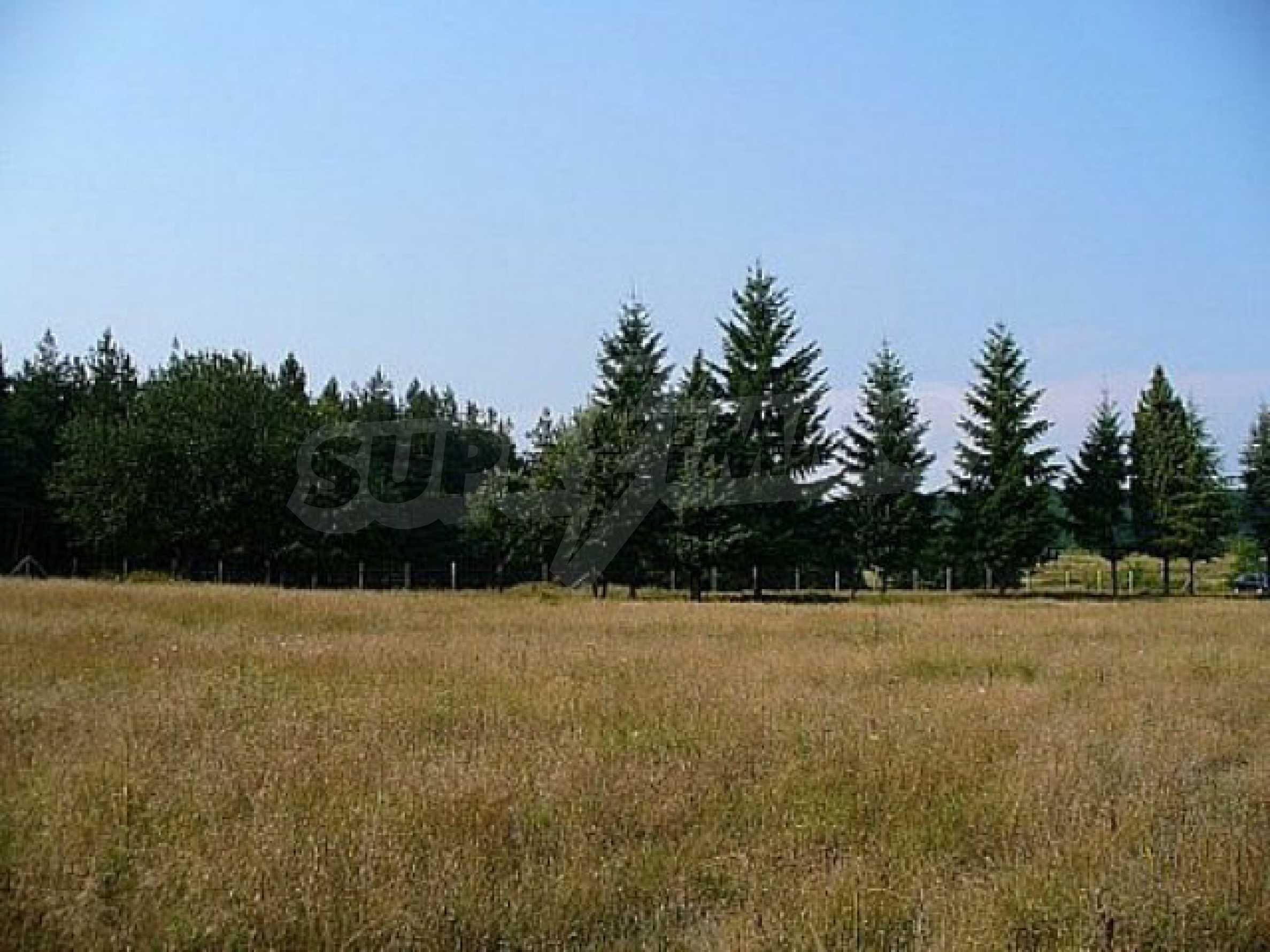 Geregeltes Land im Dorf Rudnik 19
