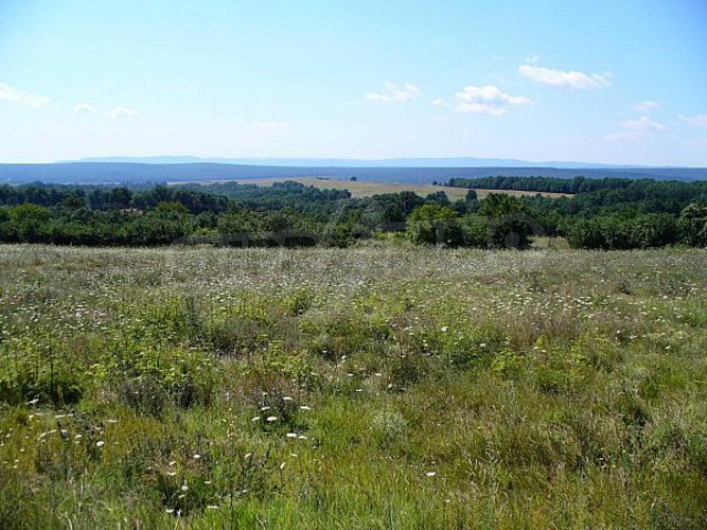 Geregeltes Land im Dorf Rudnik 27