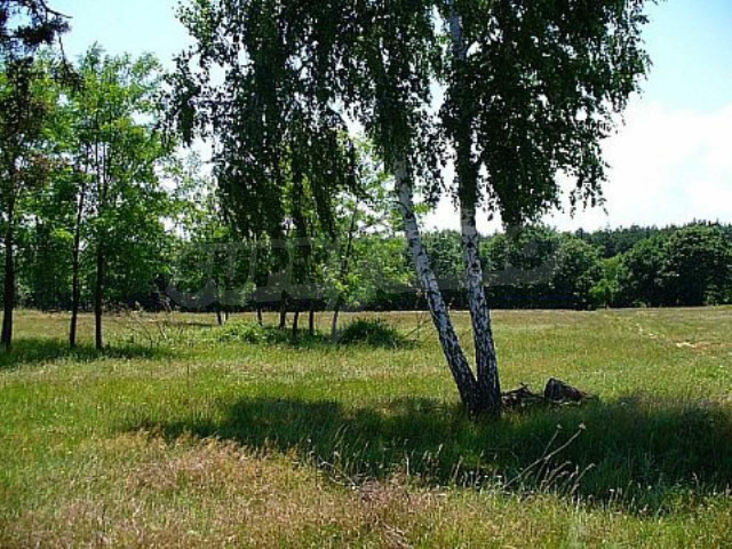 Geregeltes Land im Dorf Rudnik 10