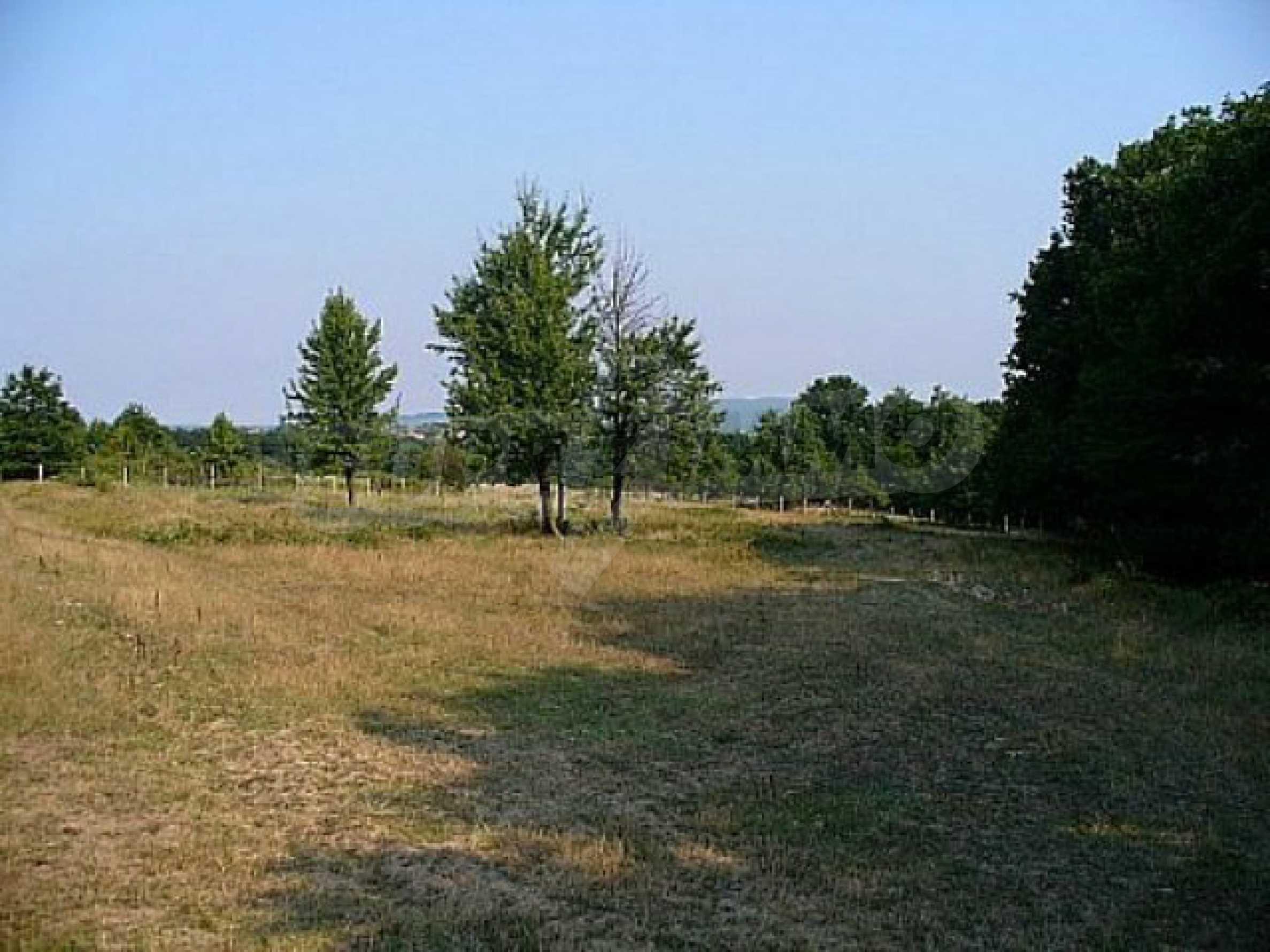 Geregeltes Land im Dorf Rudnik 20