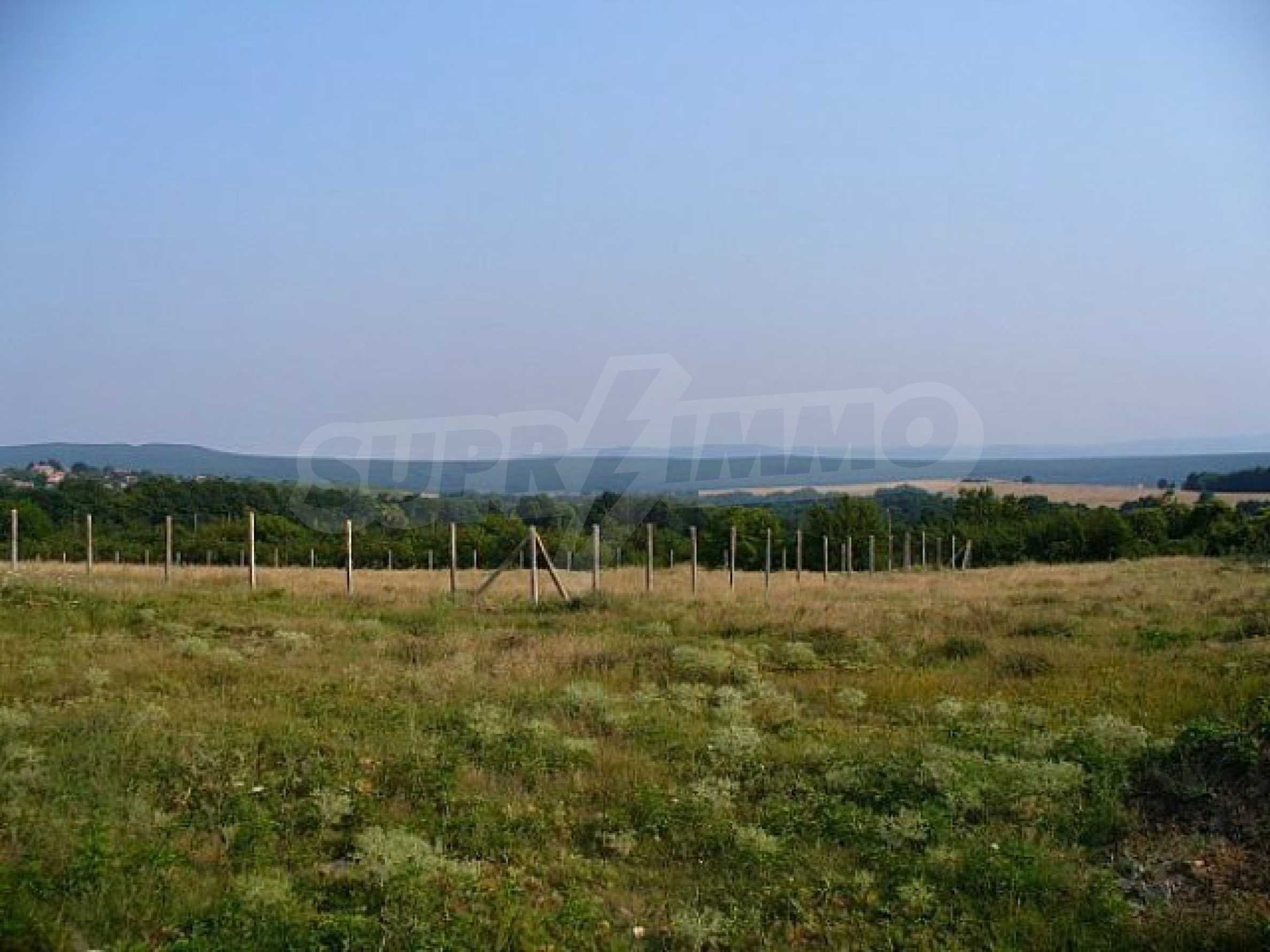 Geregeltes Land im Dorf Rudnik 37
