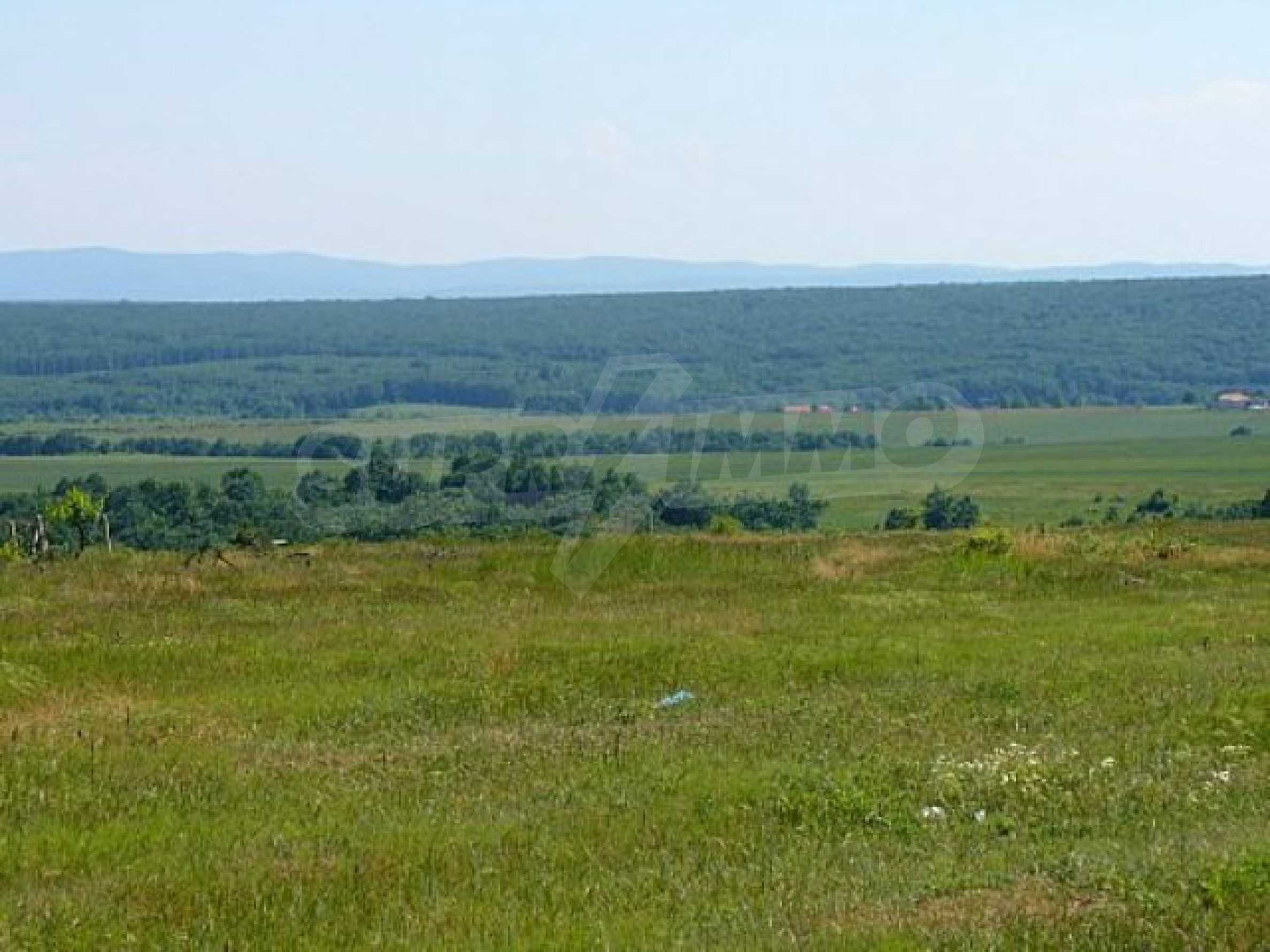 Geregeltes Land im Dorf Rudnik 4