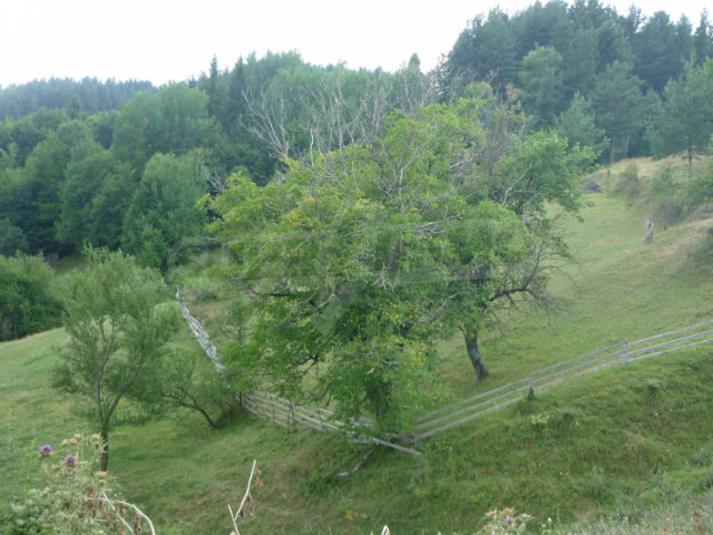 Großes reguliertes Baugrundstück 15 km vom Kurort Smolyan entfernt 1