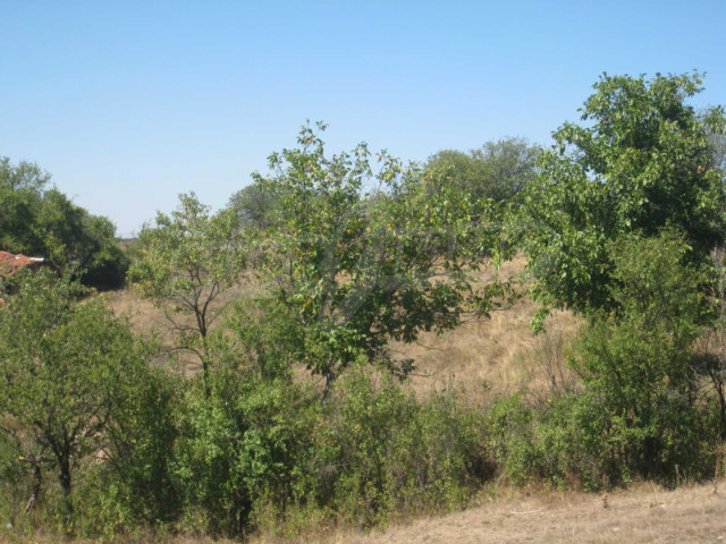 Geregeltes Baugrundstück in einem Dorf in der Nähe von Elin Pelin 16