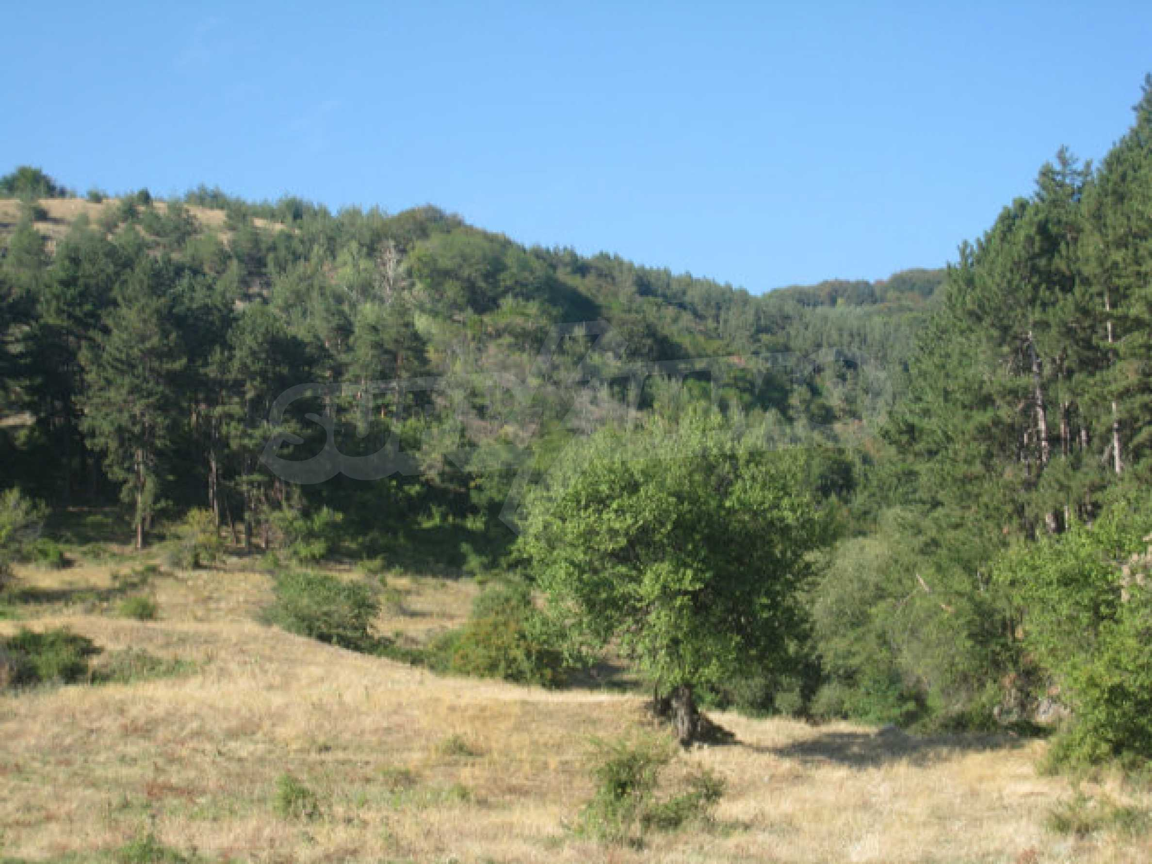 Geregeltes Grundstück in einem ruhigen Dorf in der Nähe der Balkanstraße 9