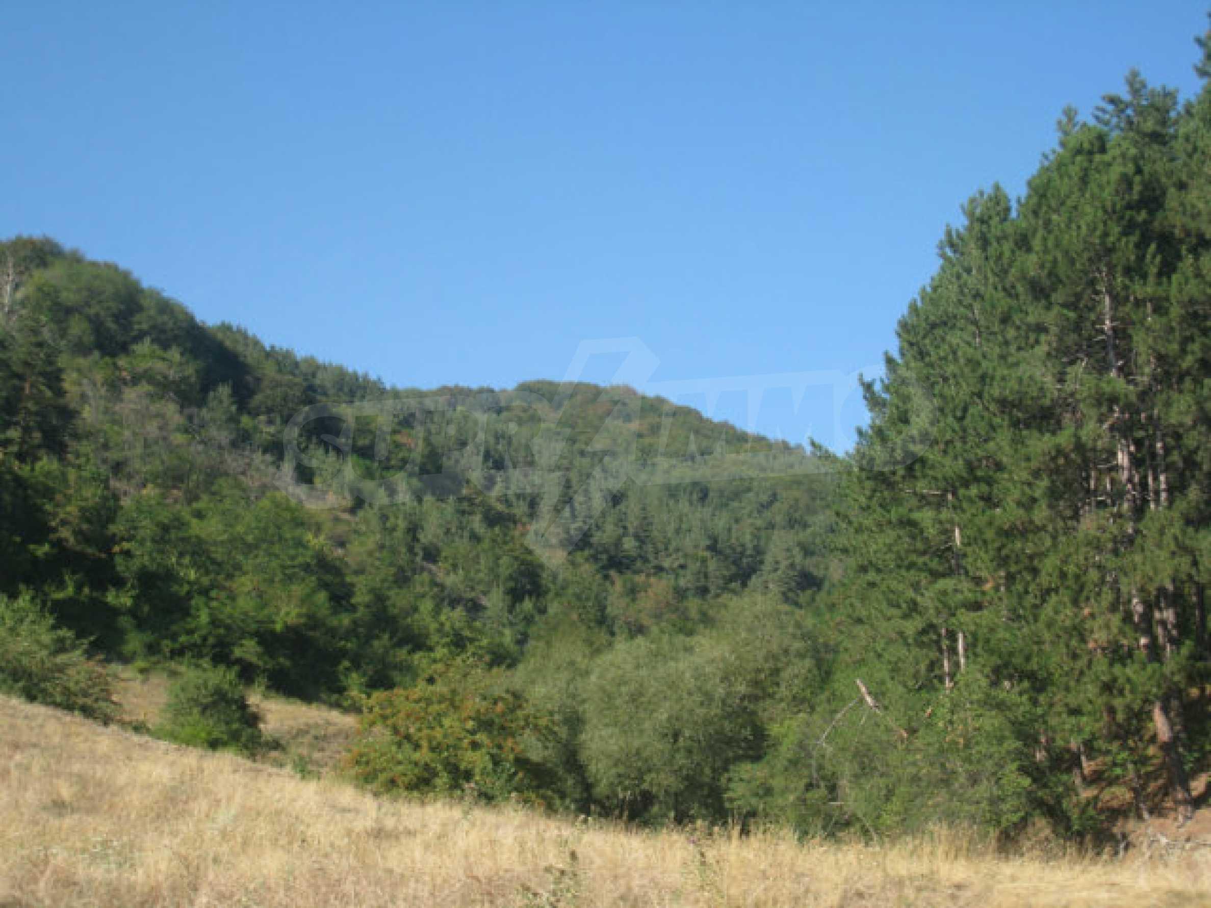 Geregeltes Grundstück in einem ruhigen Dorf in der Nähe der Balkanstraße 12
