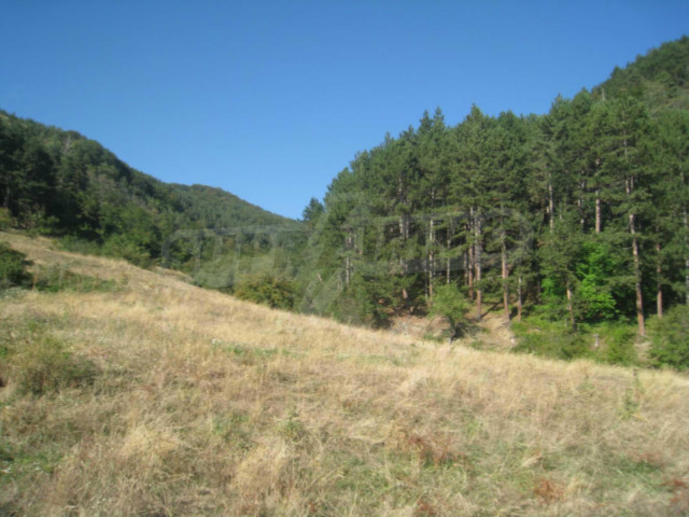 Geregeltes Grundstück in einem ruhigen Dorf in der Nähe der Balkanstraße 15