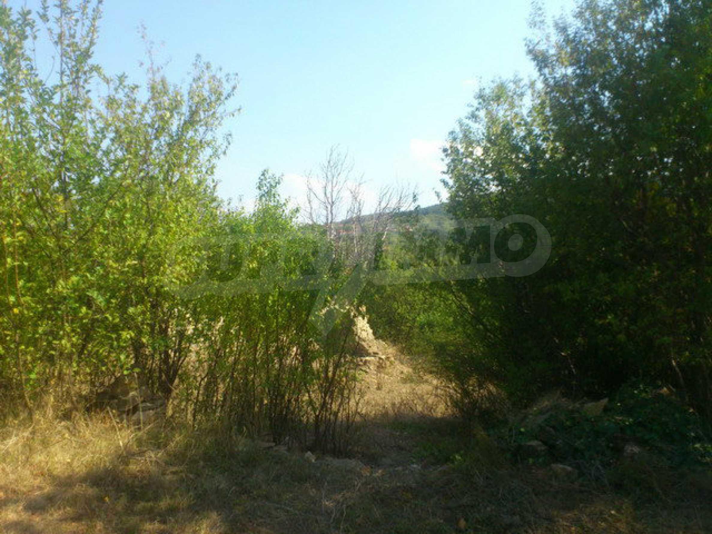 Geregeltes Grundstück in einem Dorf 30 km. von Veliko Tarnovo 10