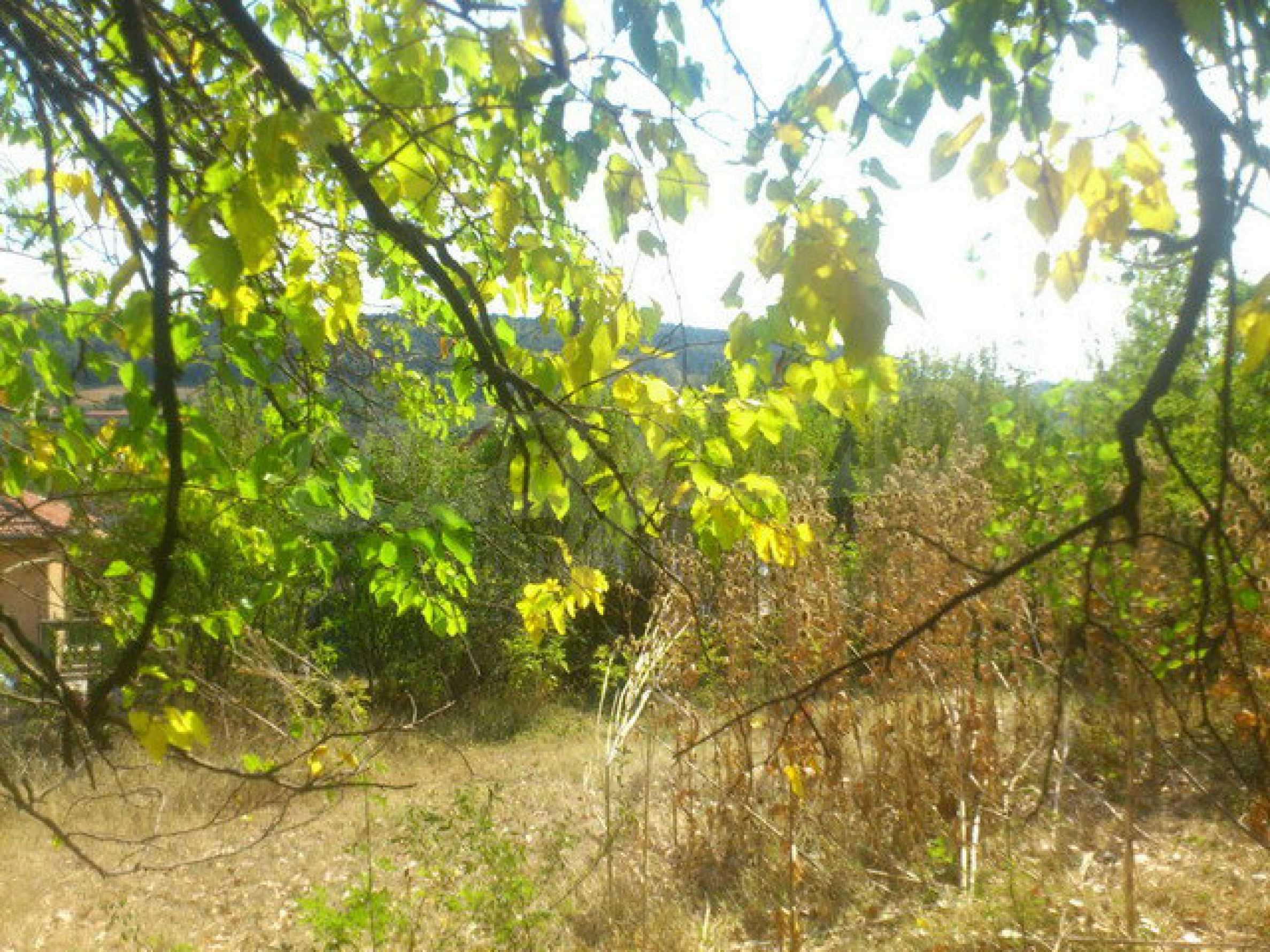 Geregeltes Grundstück in einem Dorf 30 km. von Veliko Tarnovo 19