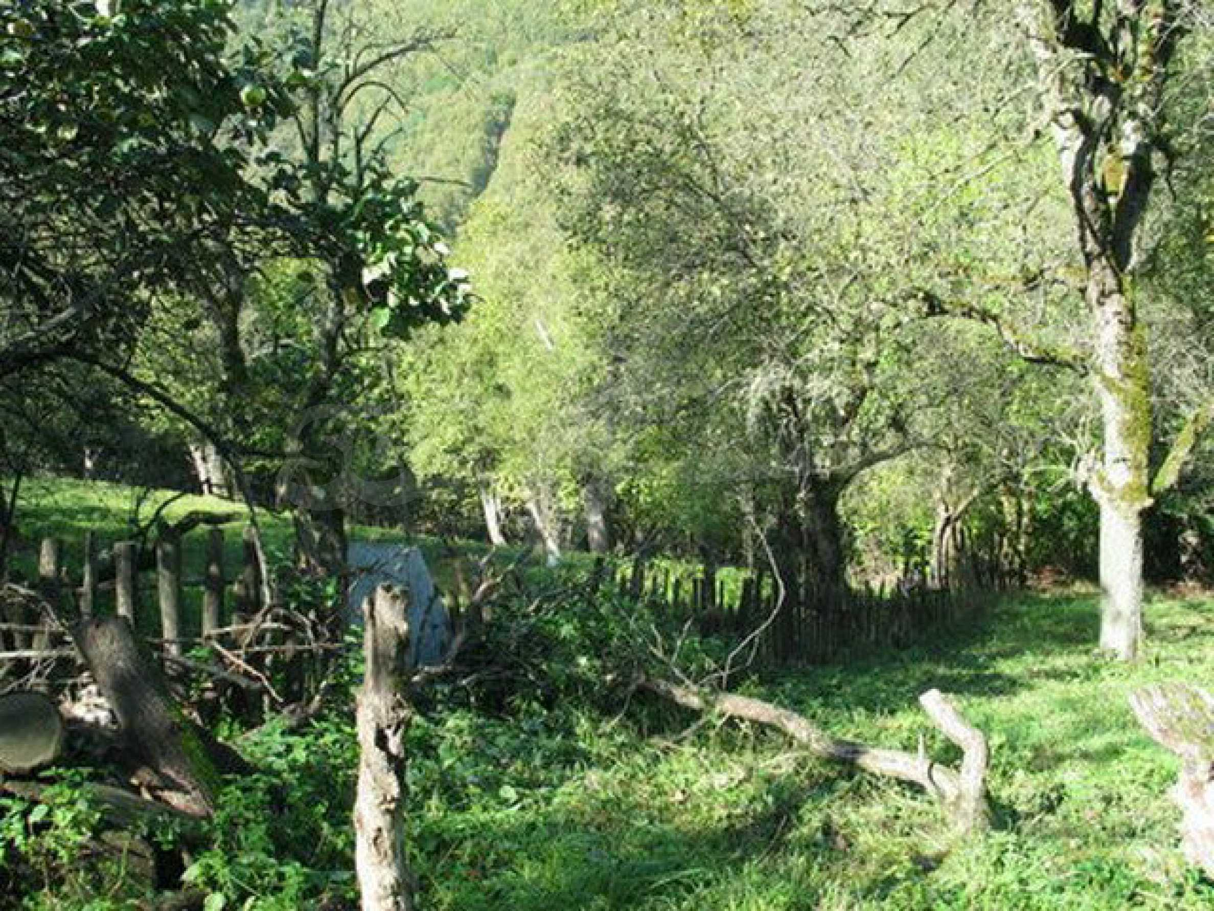 Spacious plot of land in Teteven 11