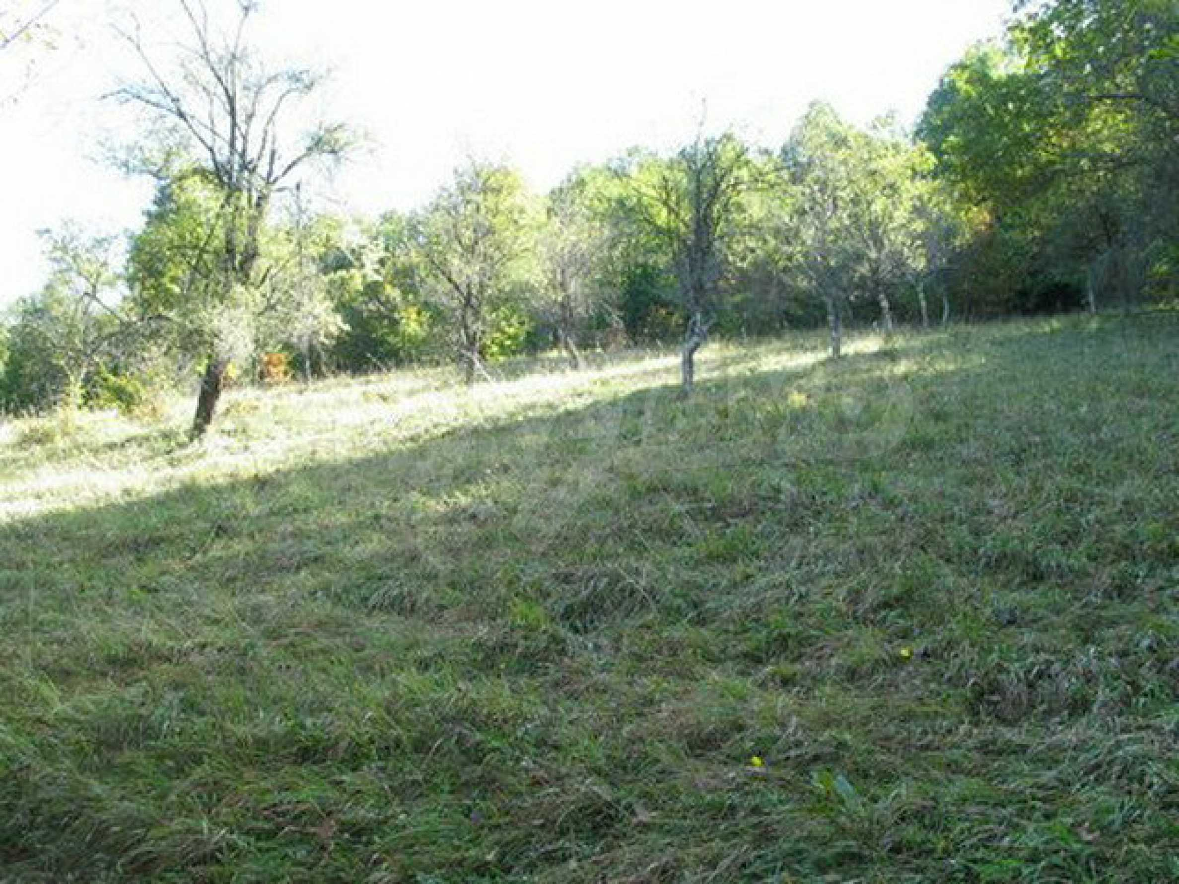 Spacious plot of land in Teteven 18