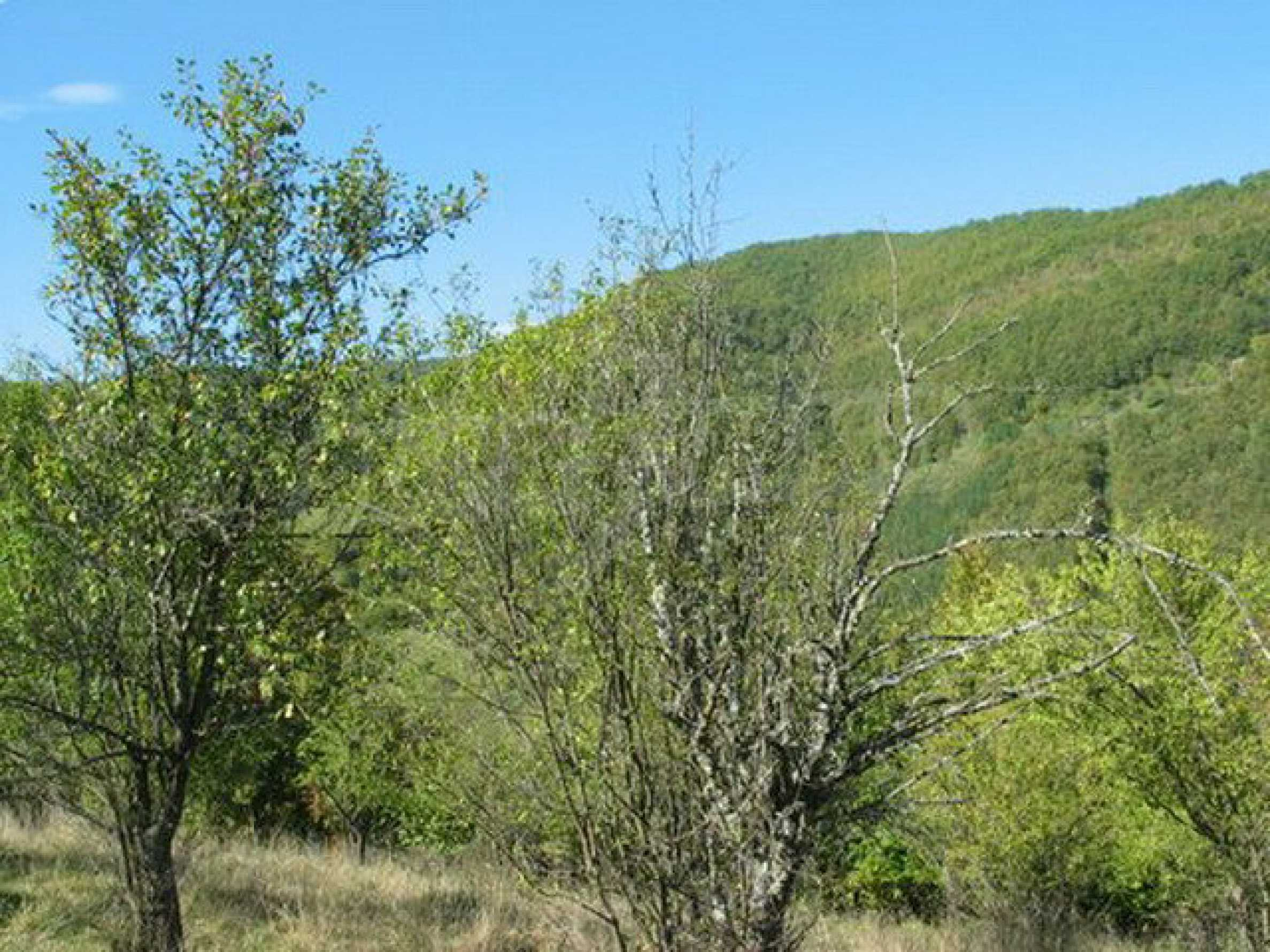 Spacious plot of land in Teteven 31