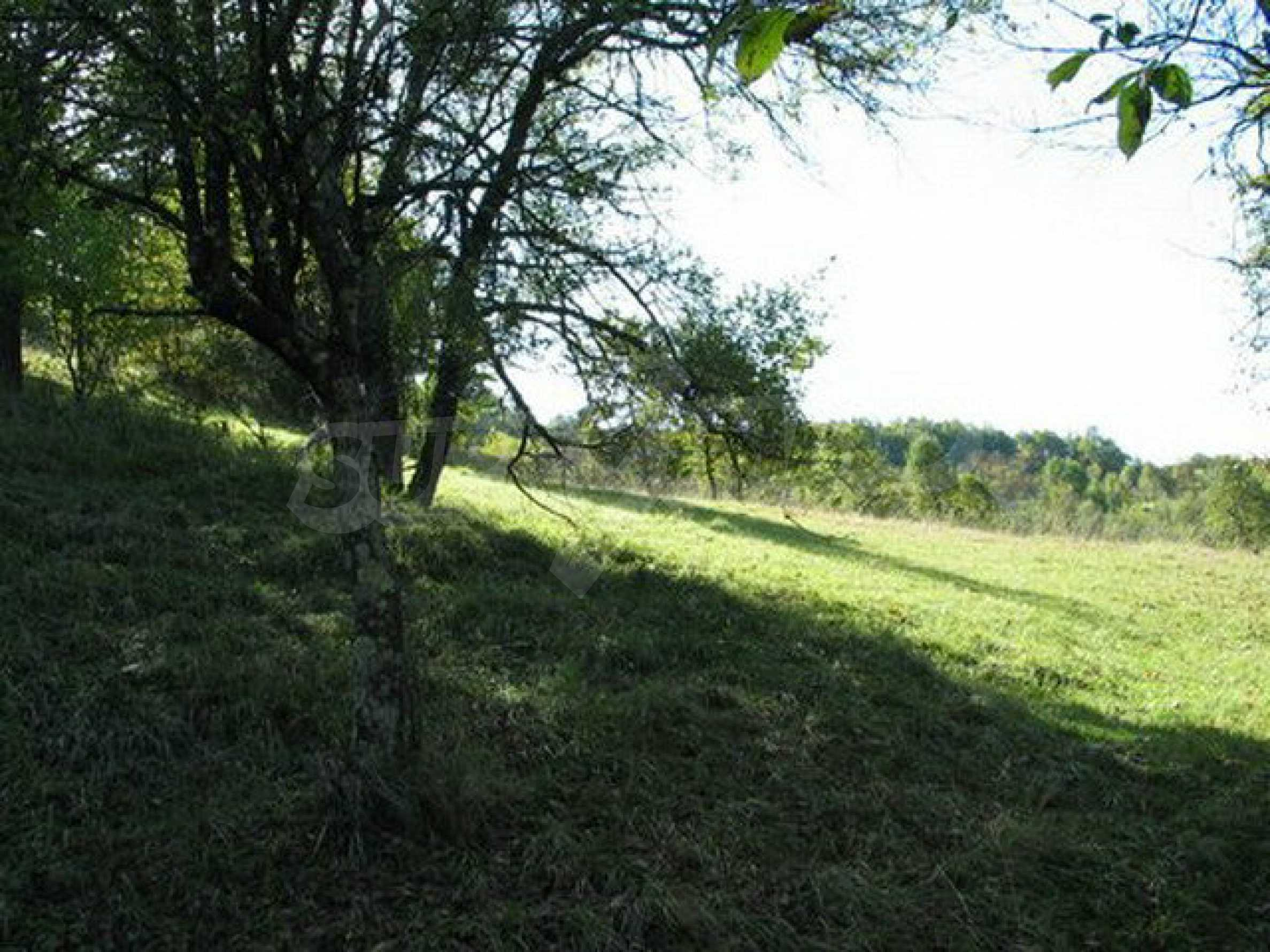 Spacious plot of land in Teteven 36