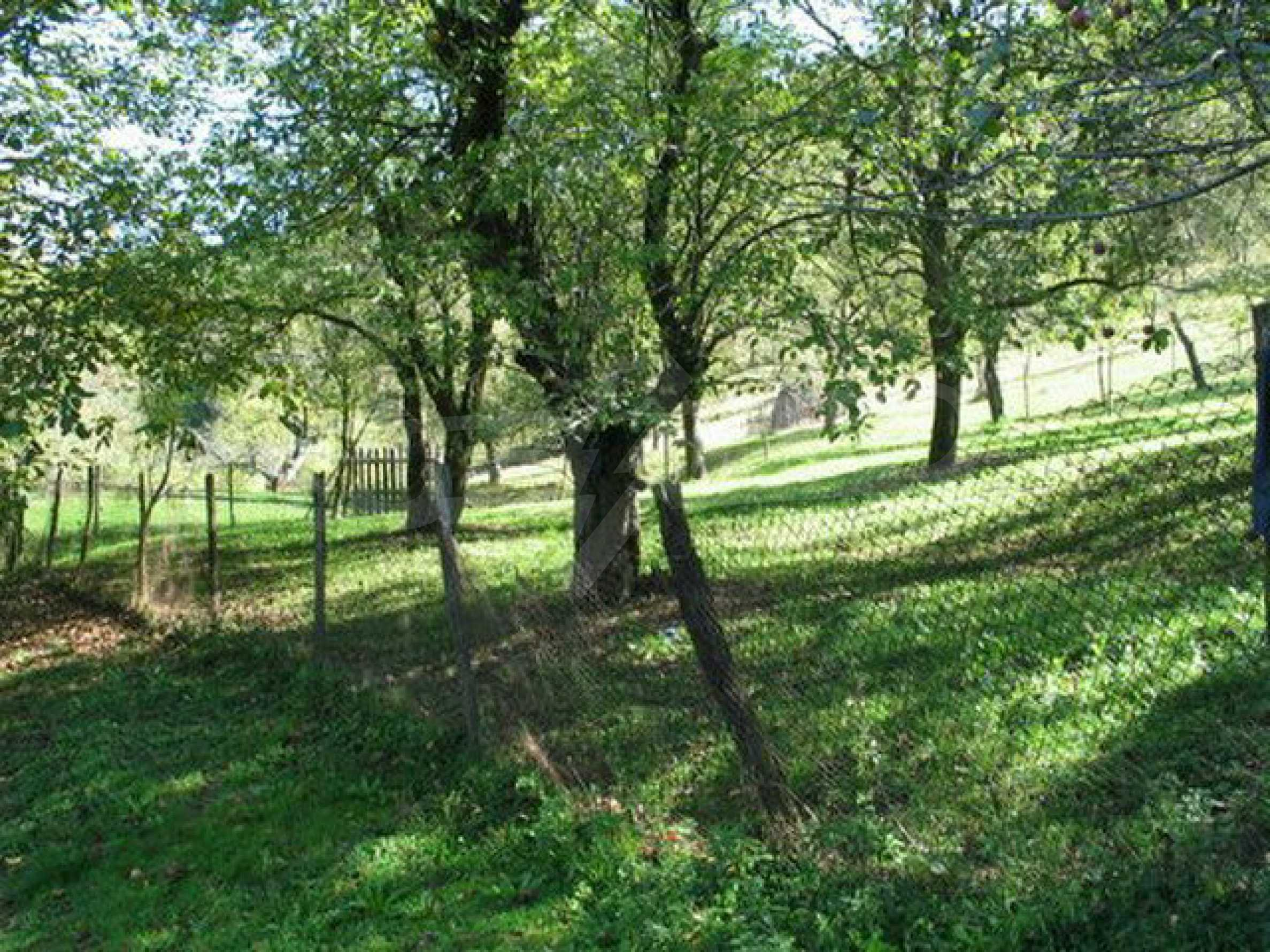 Spacious plot of land in Teteven 46