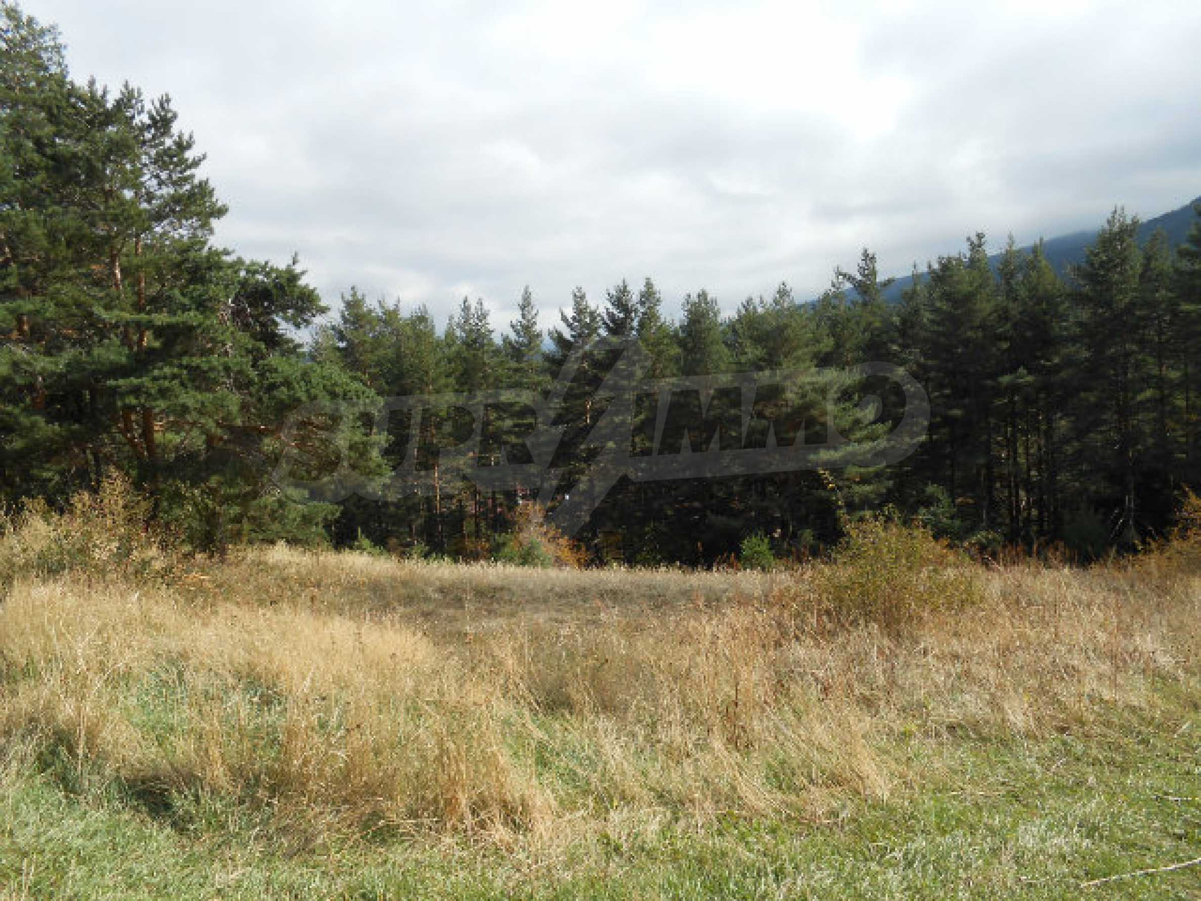 Regulated plot with project and potential in ski resort near Sapareva Banya 4