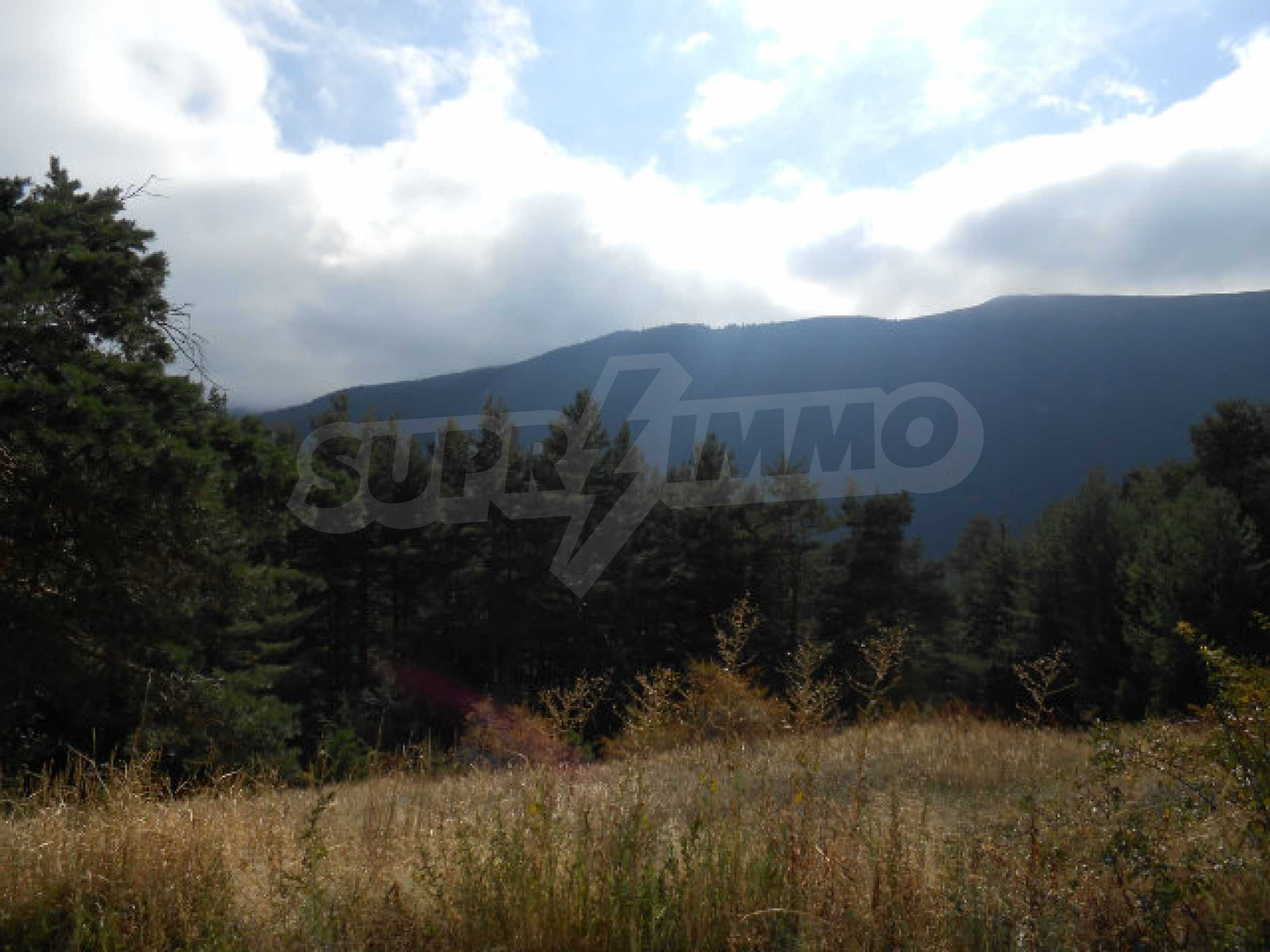 Regulated plot with project and potential in ski resort near Sapareva Banya 7