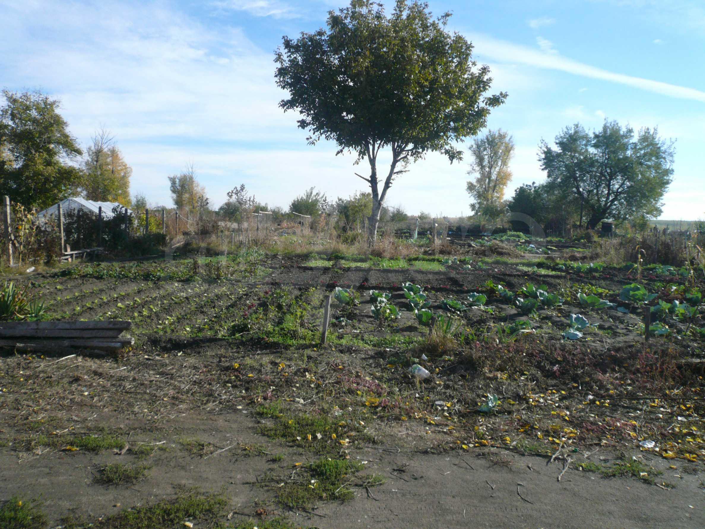Großes reguliertes Grundstück für die Entwicklung von Einfamilienhäusern in Vidin 1