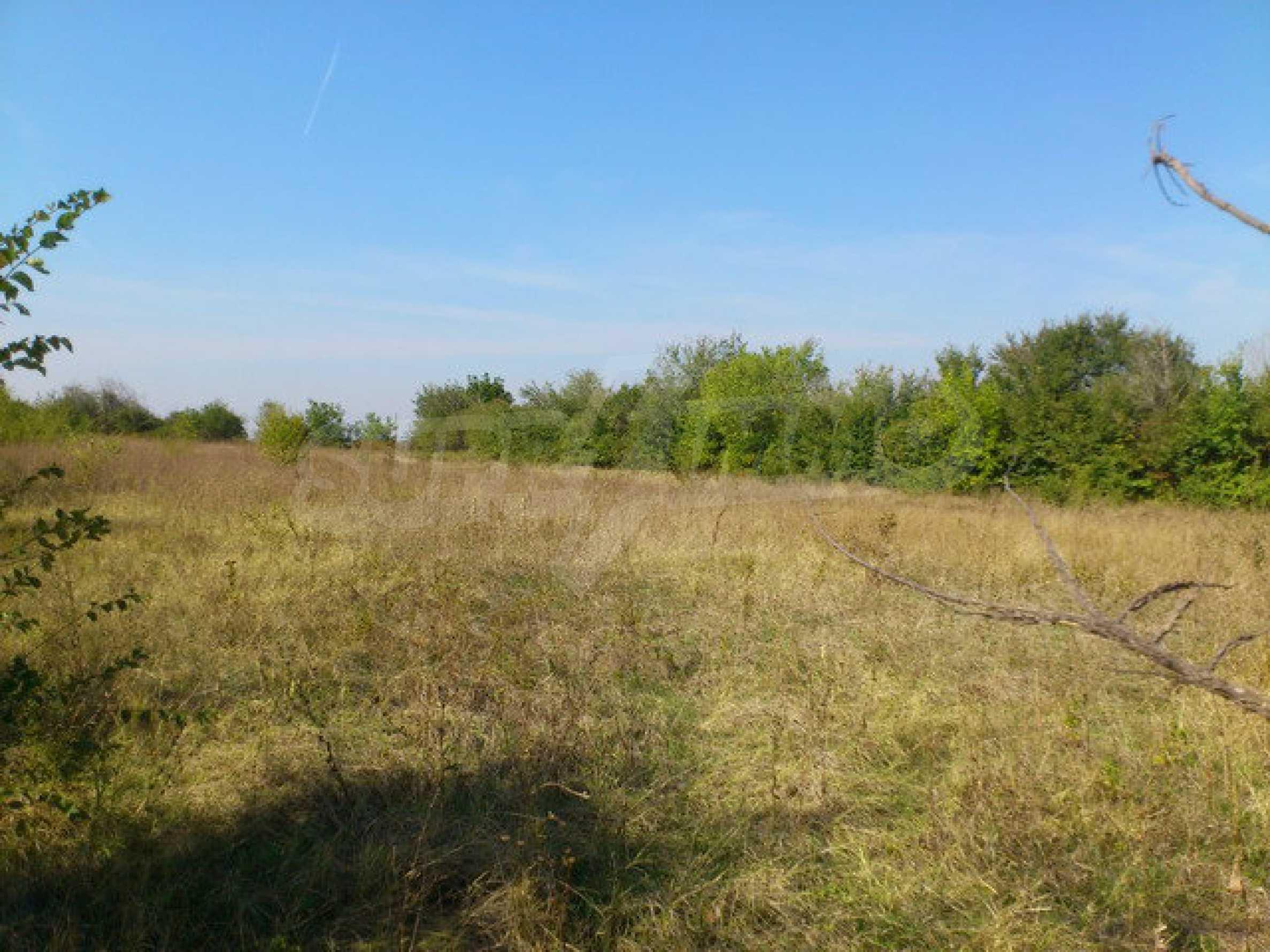 Geregeltes Grundstück mit einem Teil der landwirtschaftlichen Nutzfläche in einem Dorf 9 km. von Veliko Tarnovo