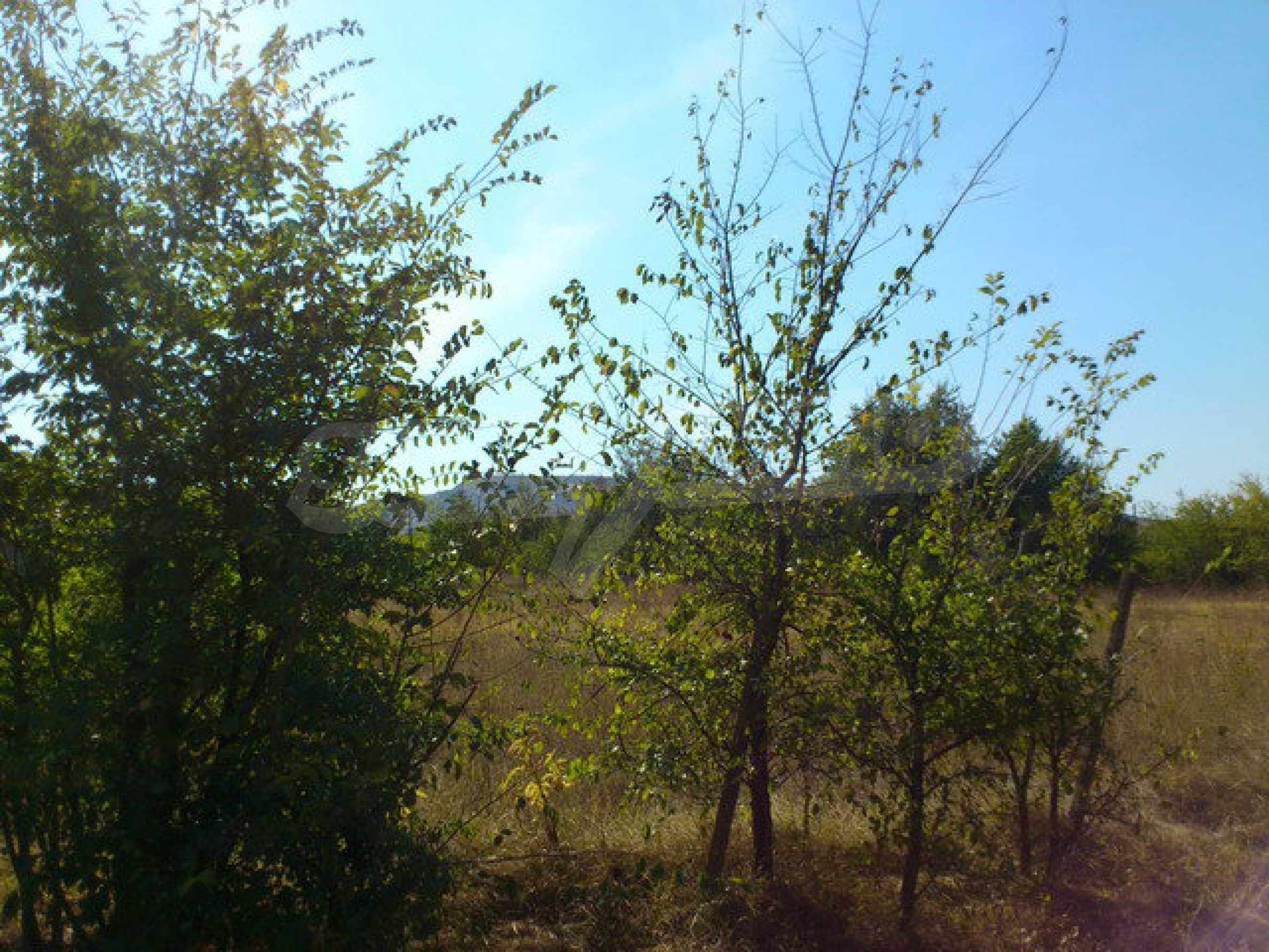 Geregeltes Grundstück mit einem Teil der landwirtschaftlichen Nutzfläche in einem Dorf 9 km. von Veliko Tarnovo 5
