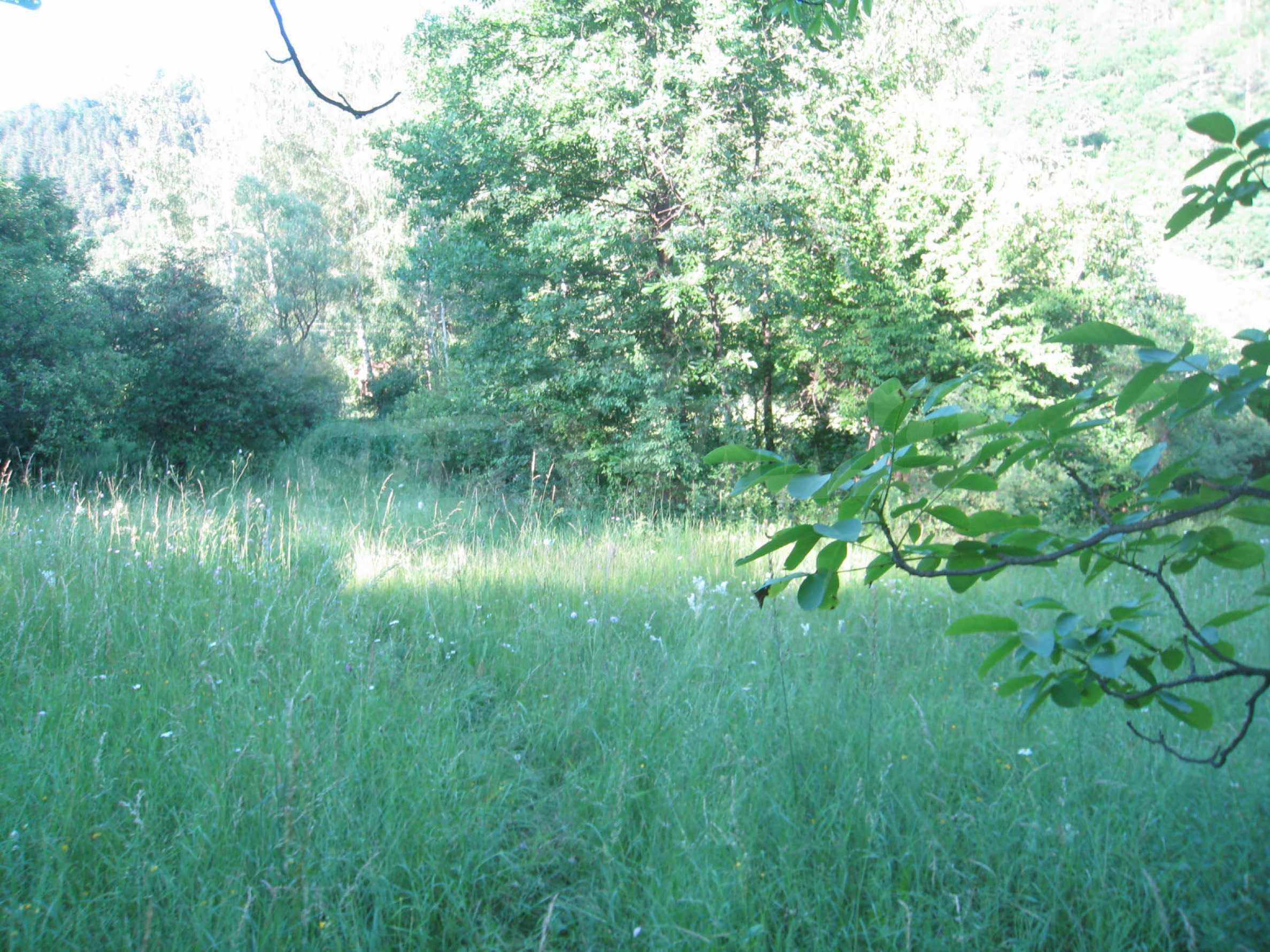 Geregeltes Grundstück in der Nähe der Flüsse Iskar und Svoge 19