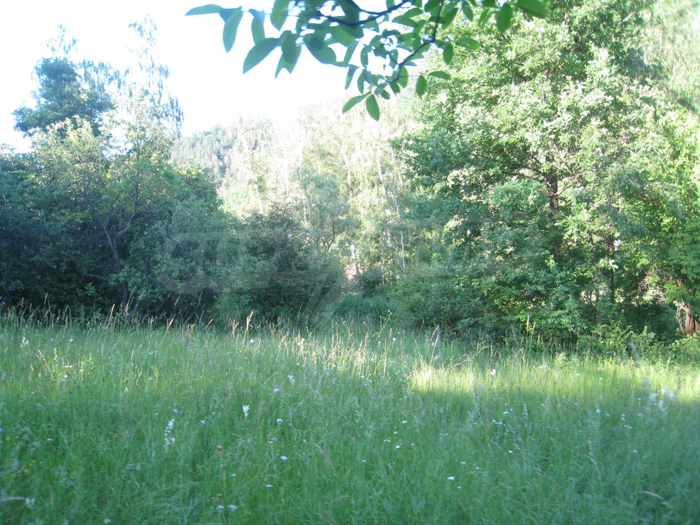 Geregeltes Grundstück in der Nähe der Flüsse Iskar und Svoge 20