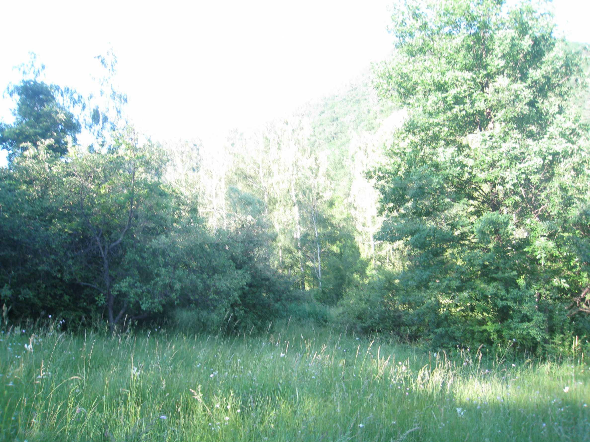 Geregeltes Grundstück in der Nähe der Flüsse Iskar und Svoge 21