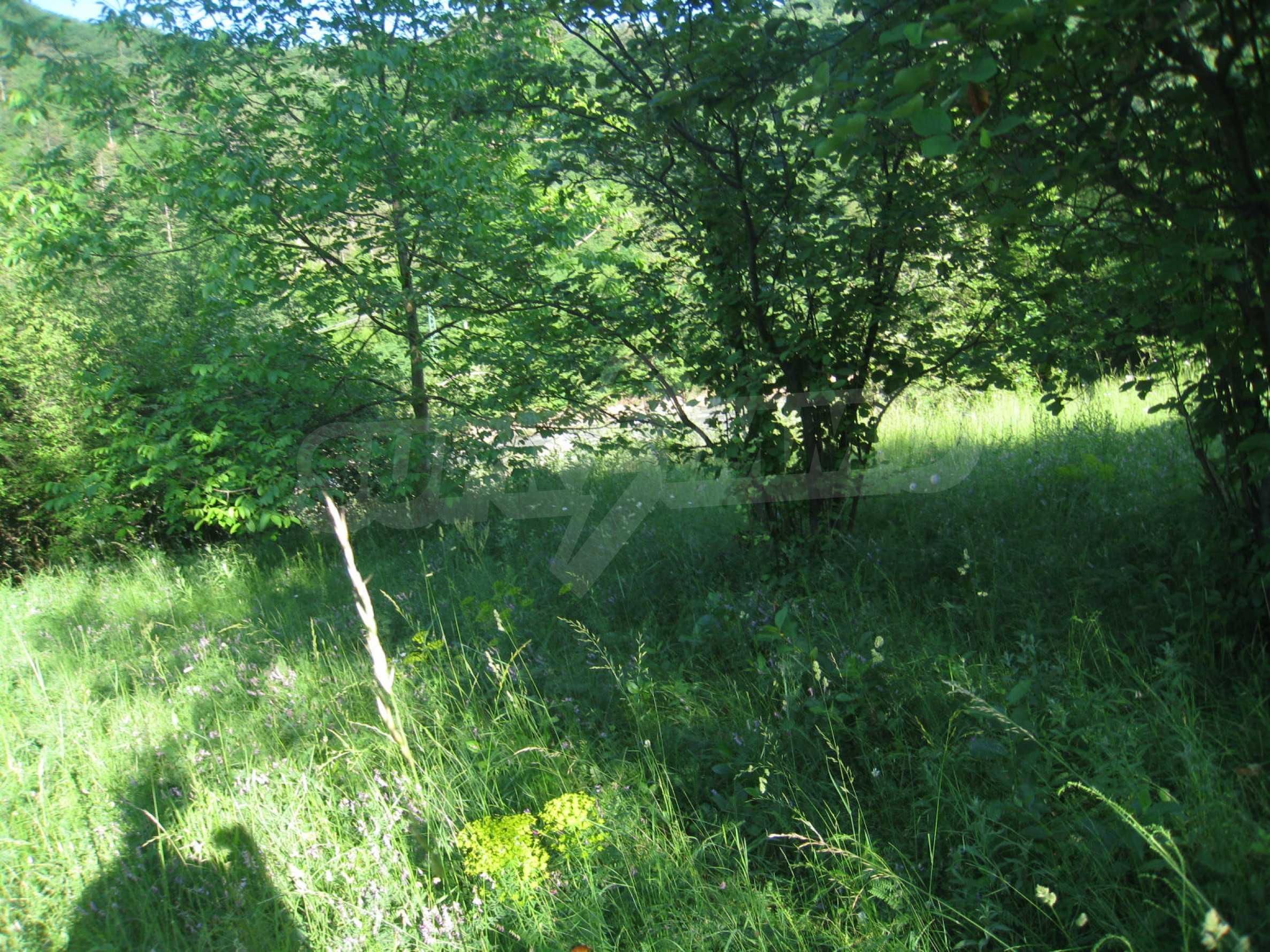 Geregeltes Grundstück in der Nähe der Flüsse Iskar und Svoge 2