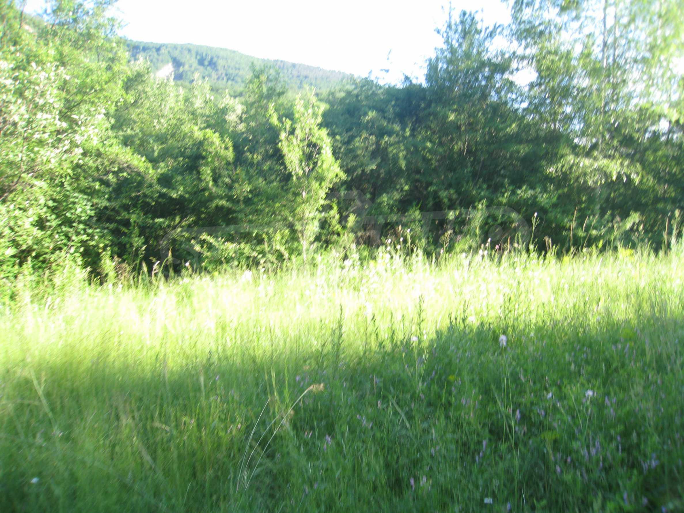 Geregeltes Grundstück in der Nähe der Flüsse Iskar und Svoge 4