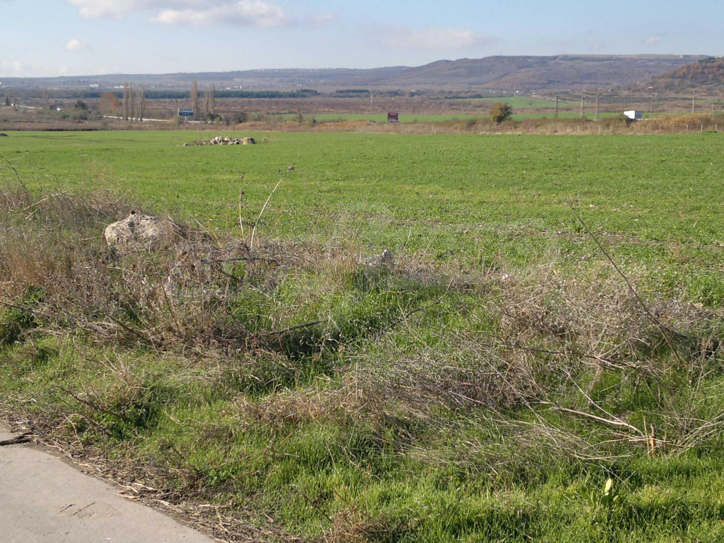 Ackerland in Ignatievo 4