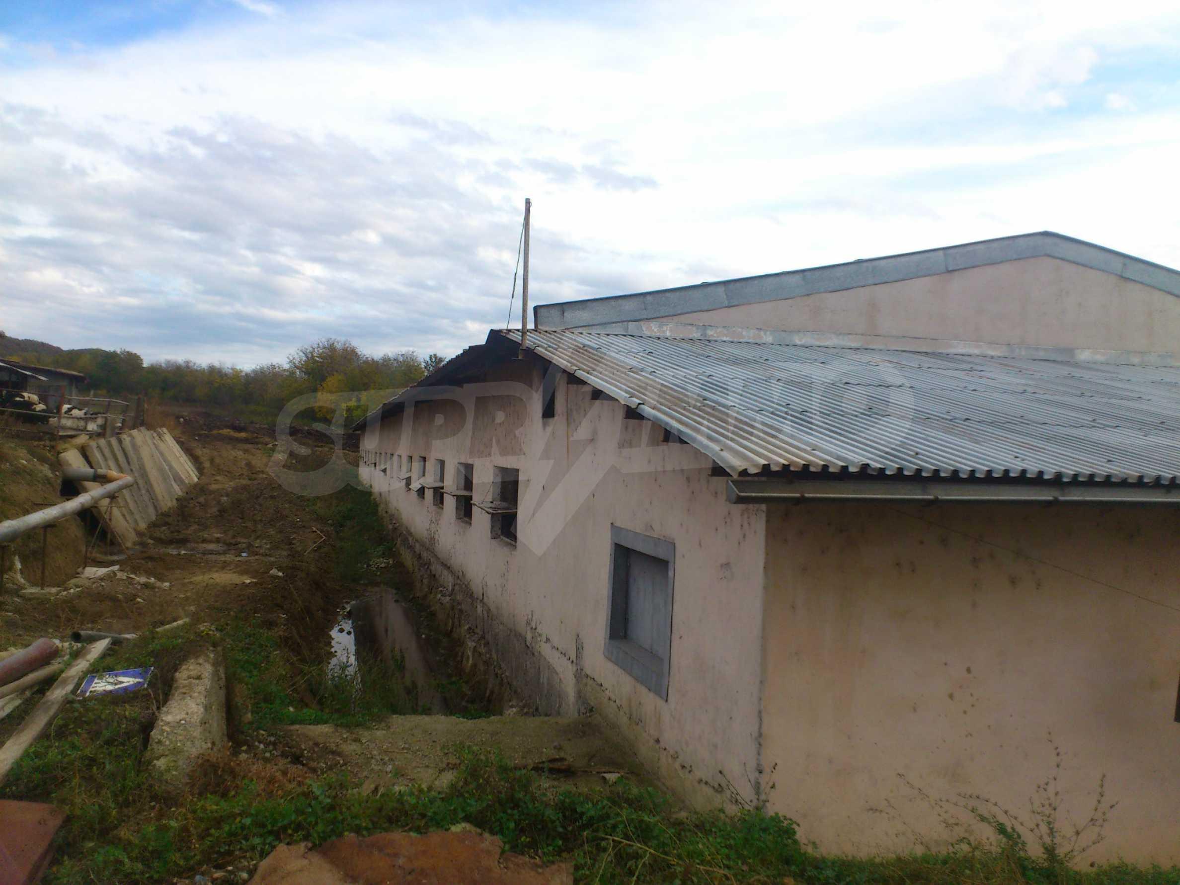 Neues Bauernhaus in einem Dorf in der Nähe von Veliko Tarnovo 13