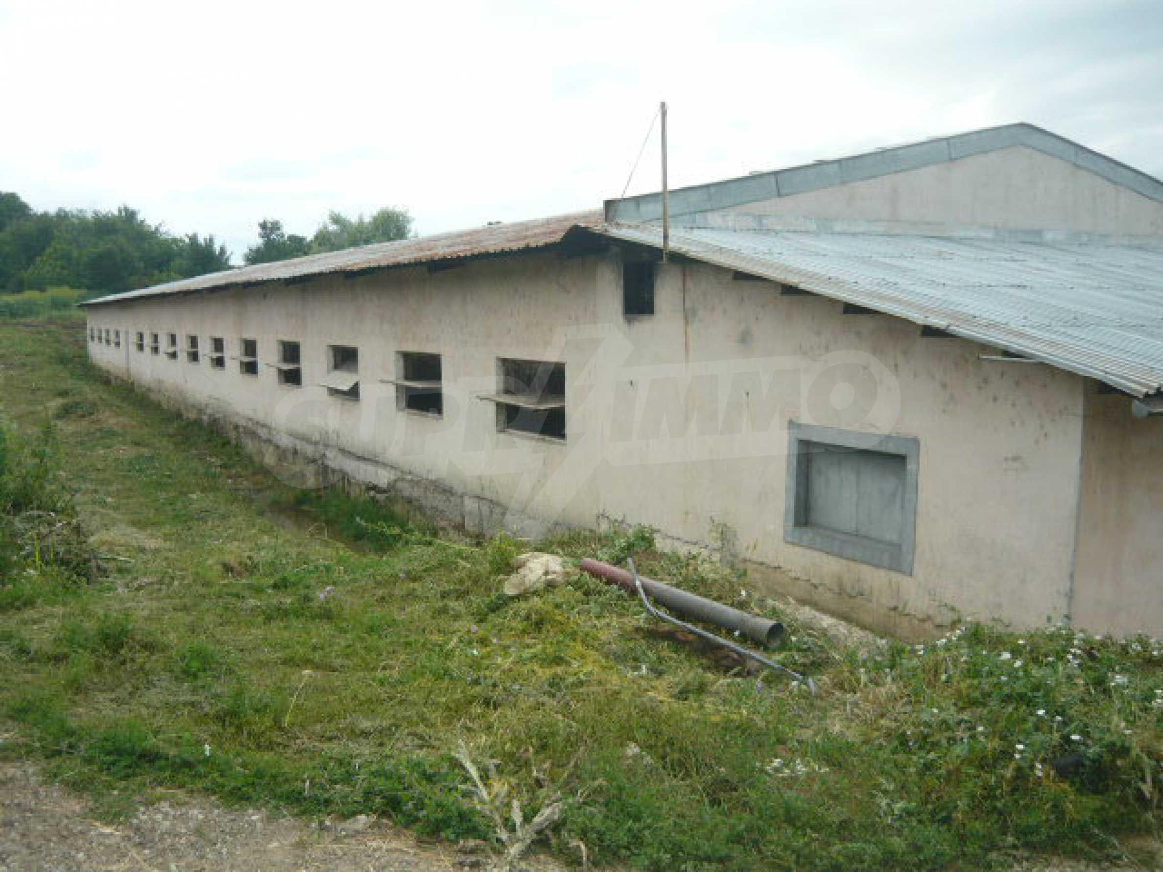 Neues Bauernhaus in einem Dorf in der Nähe von Veliko Tarnovo 17