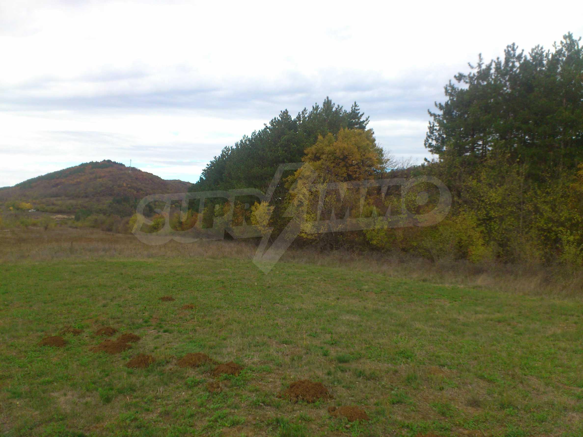 Grundstück 3 km von Veliko Tarnovo entfernt mit Blick auf eine Asphaltstraße 6