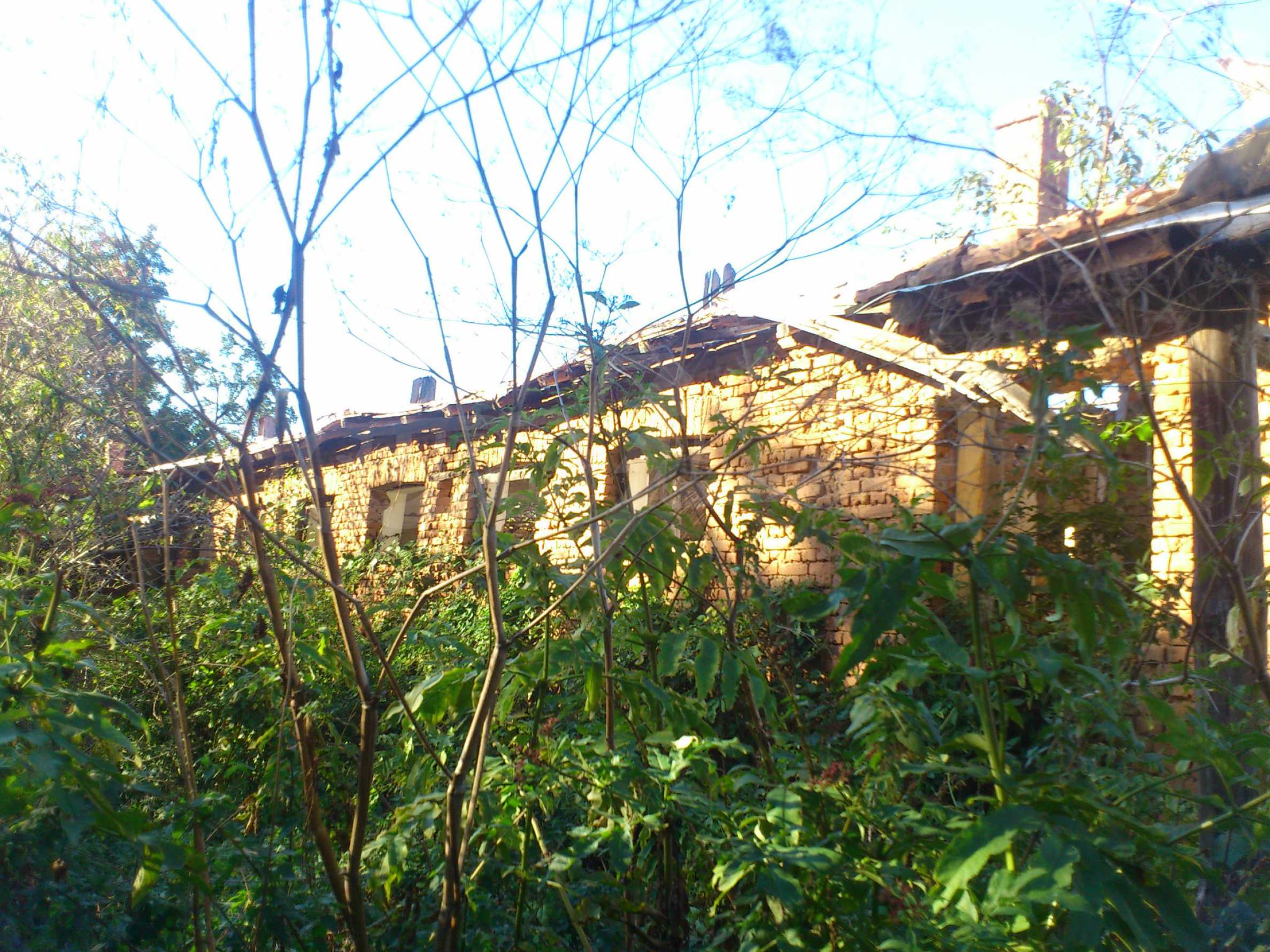 A farm with outbuildings located 8 km. from the town of Dryanovo 13