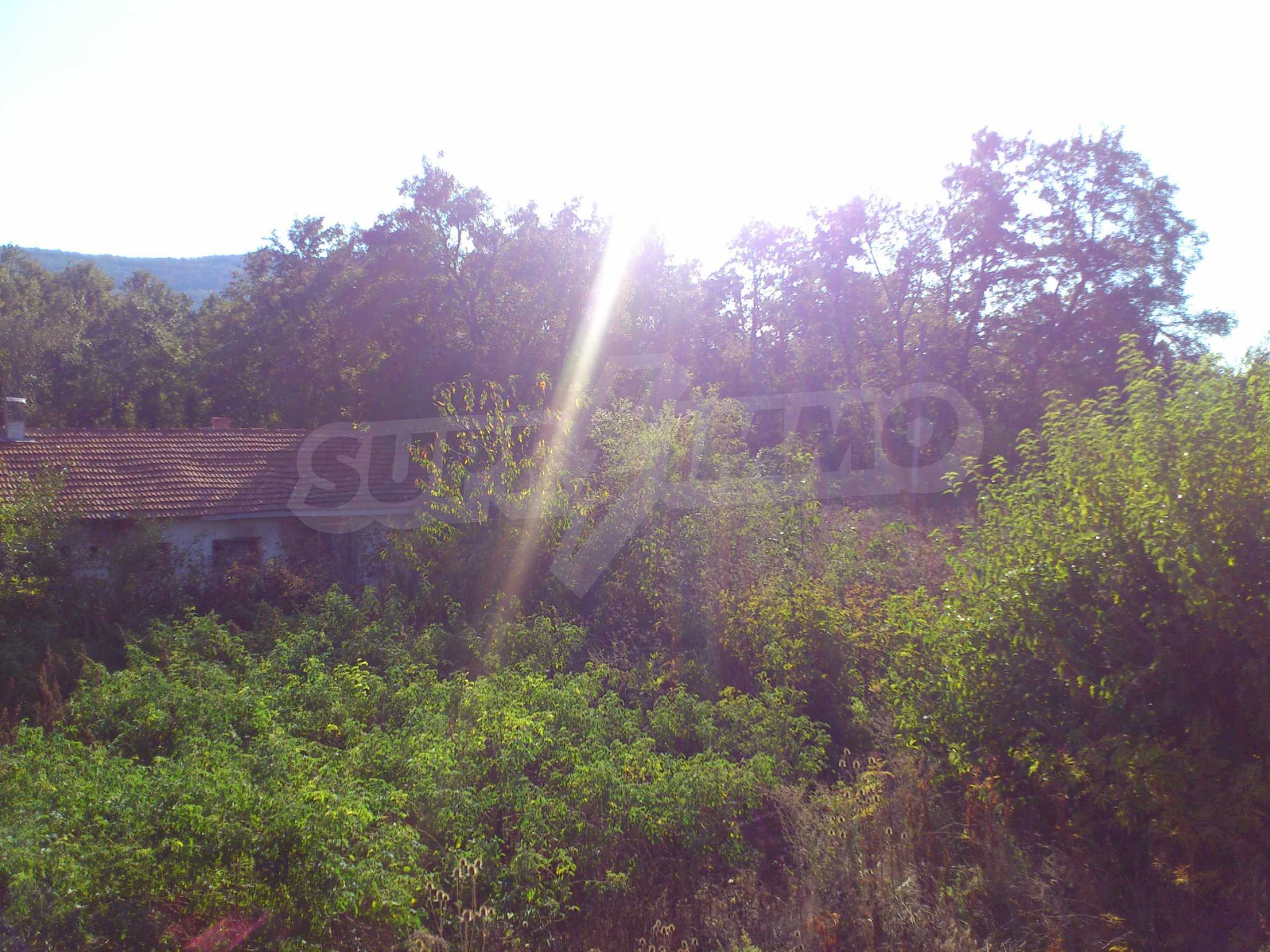 A farm with outbuildings located 8 km. from the town of Dryanovo 4