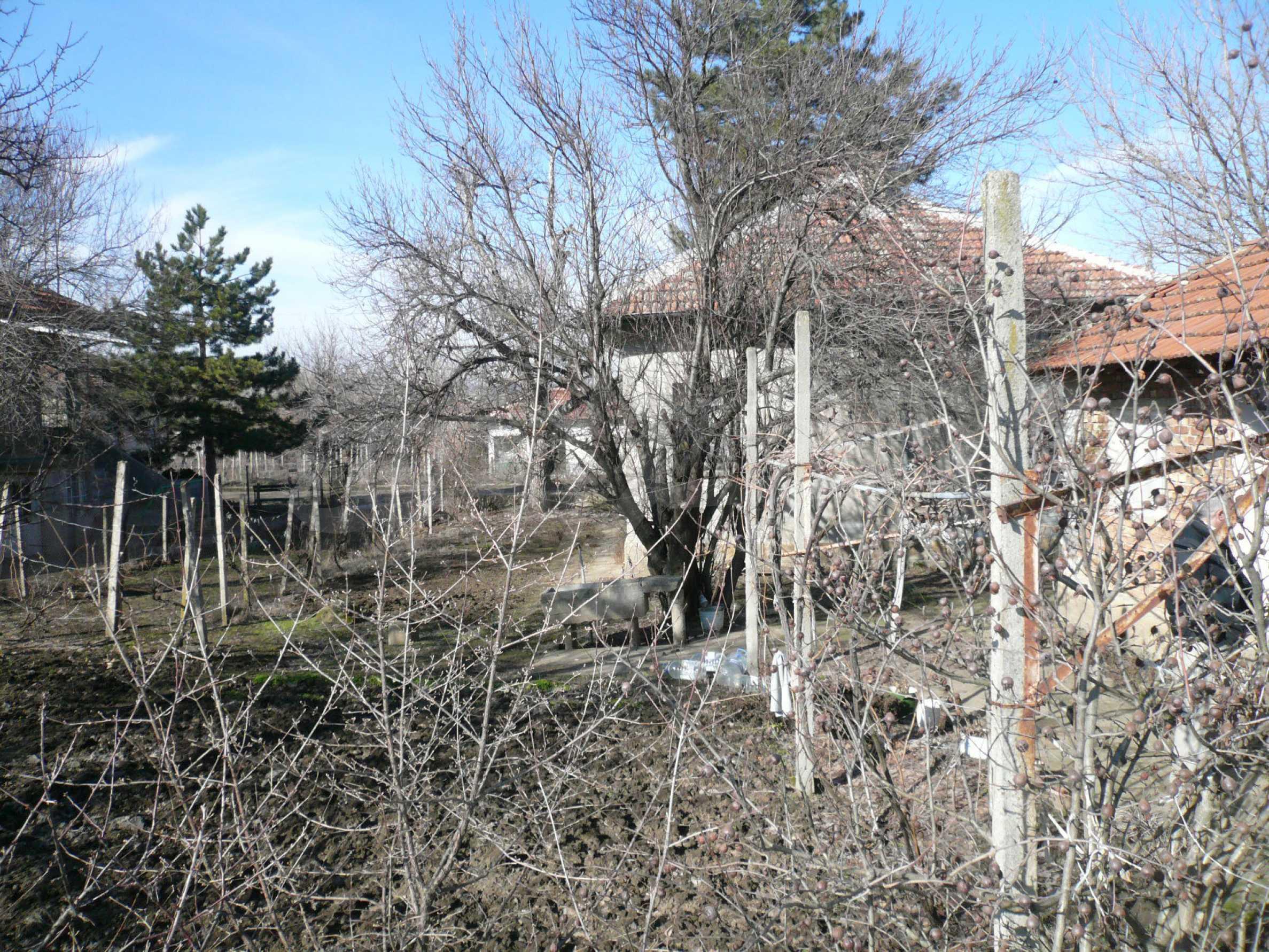Einfamilienhaus mit Garten und Sommerküche in der Nähe von Vidin 6