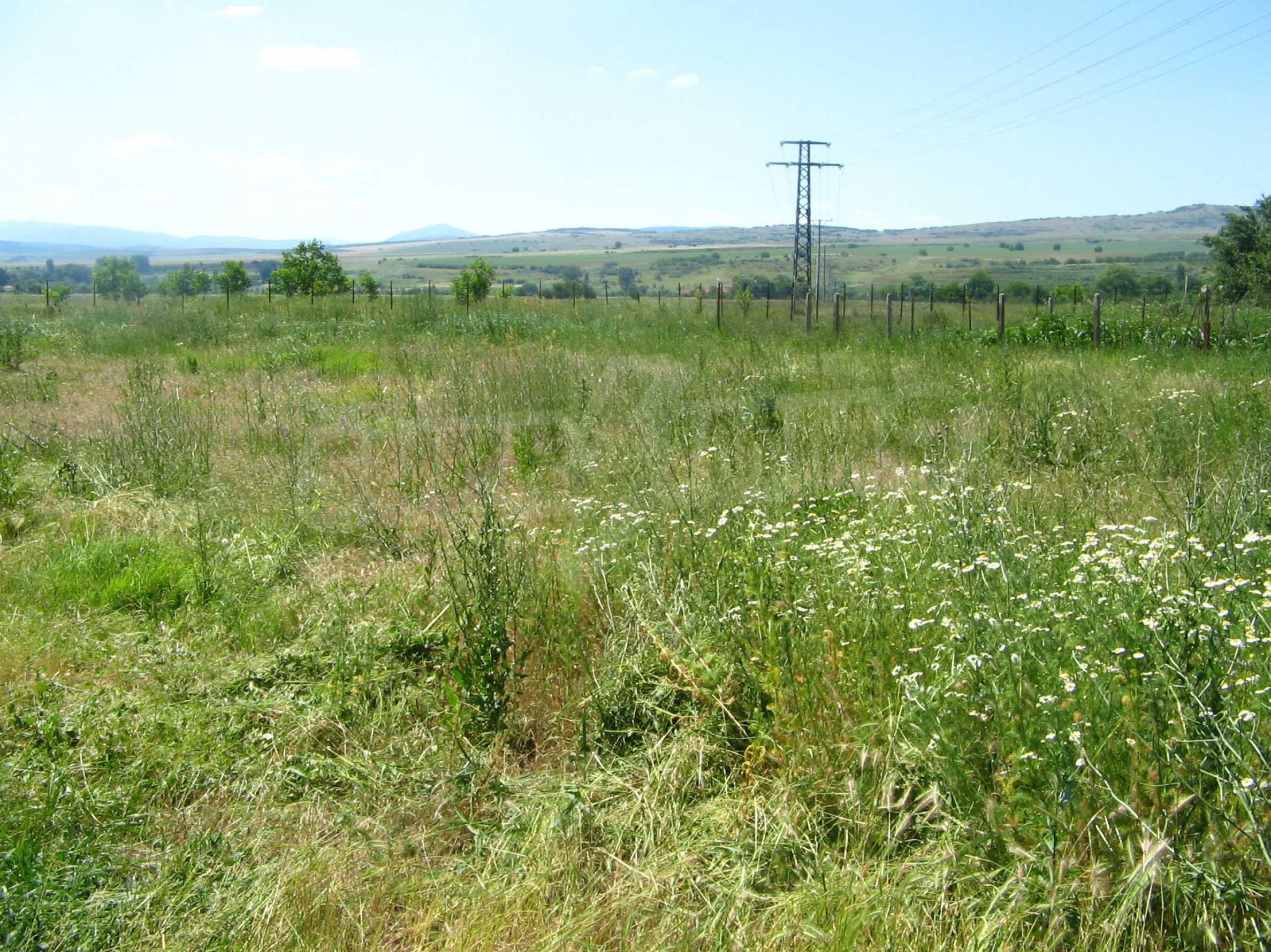 Grundstück mit Genehmigung zur Abfüllung von Quellwasser
