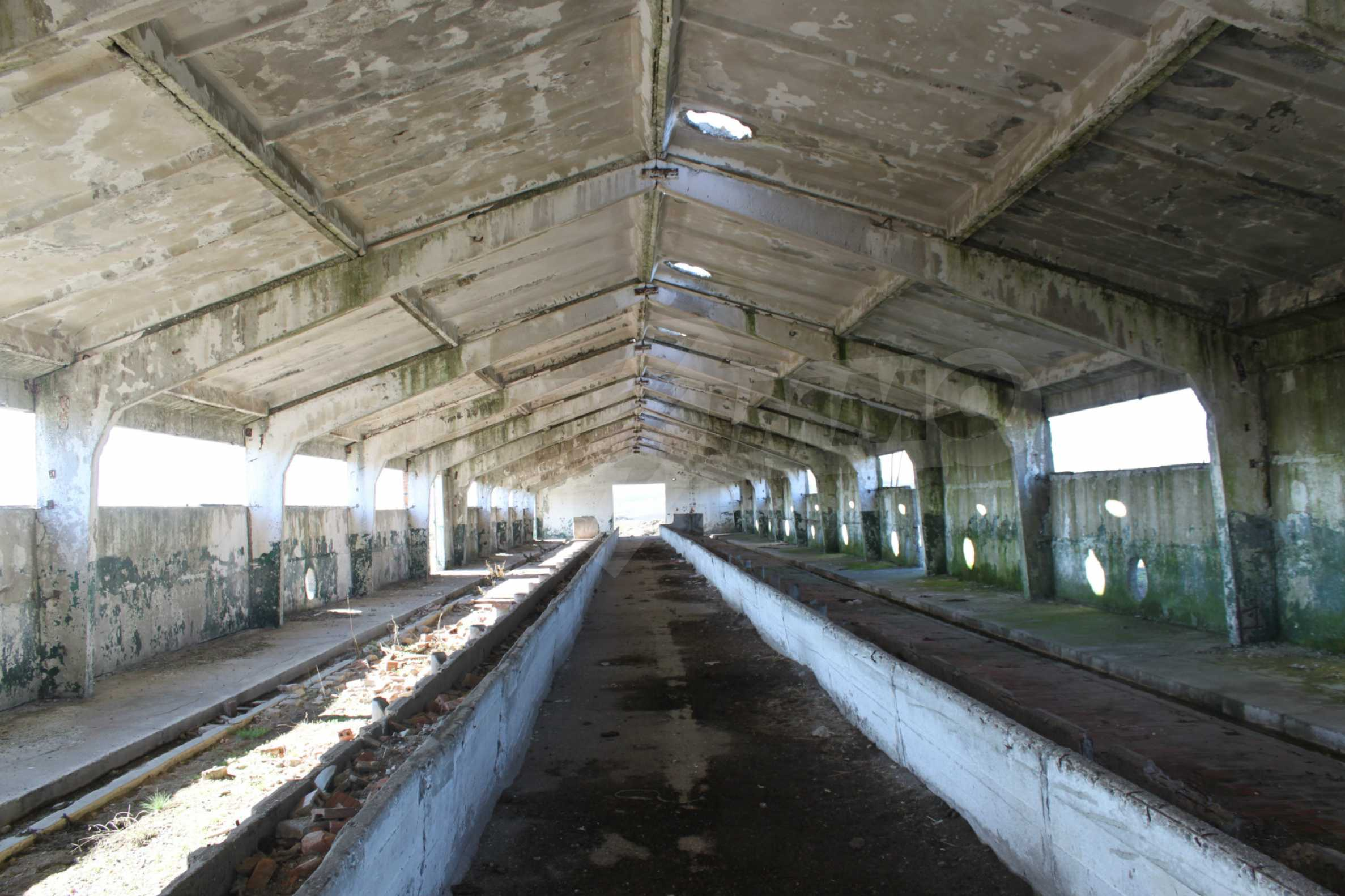 Dairy farm with a huge yard 9
