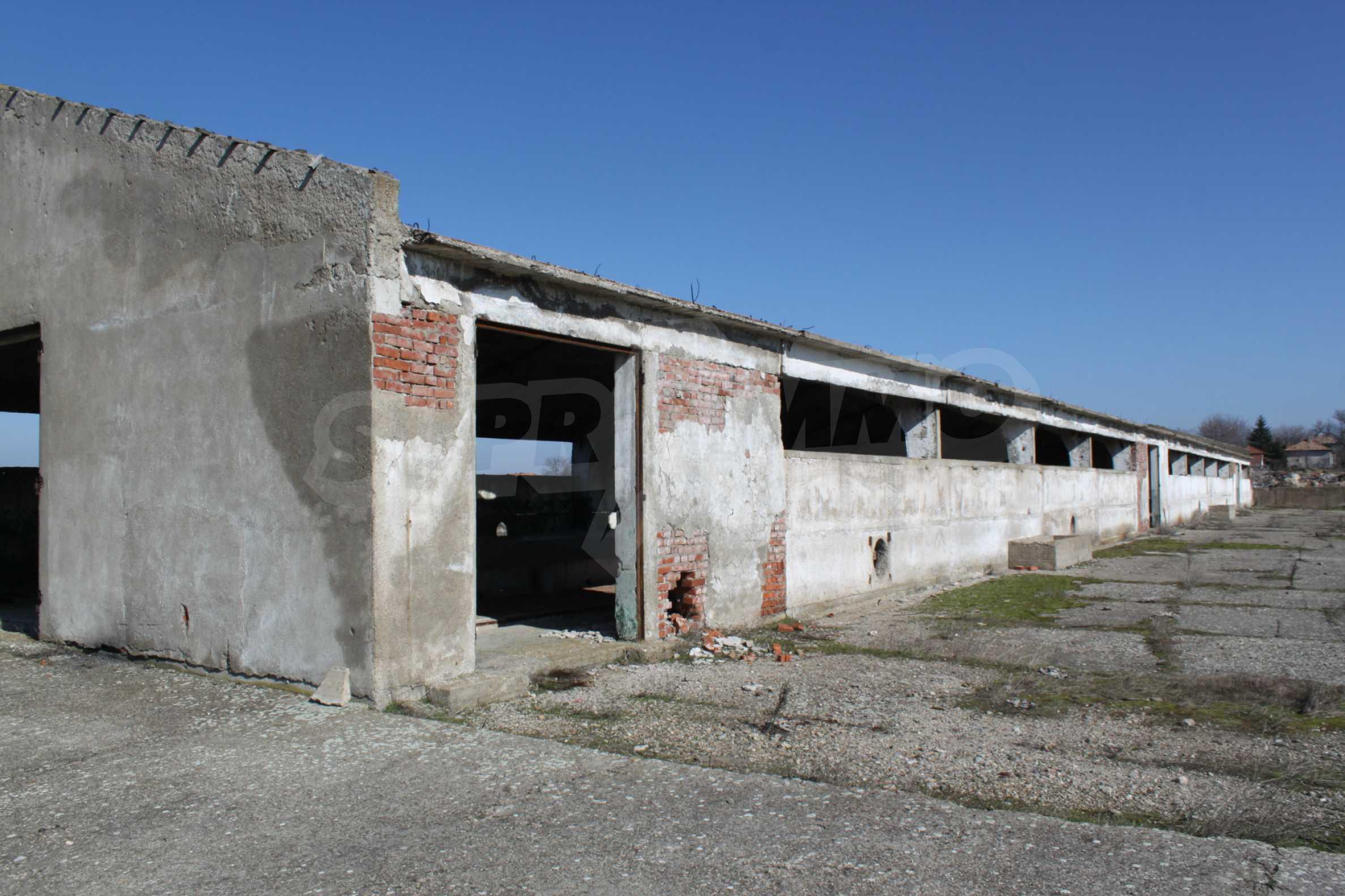 Dairy farm with a huge yard 13