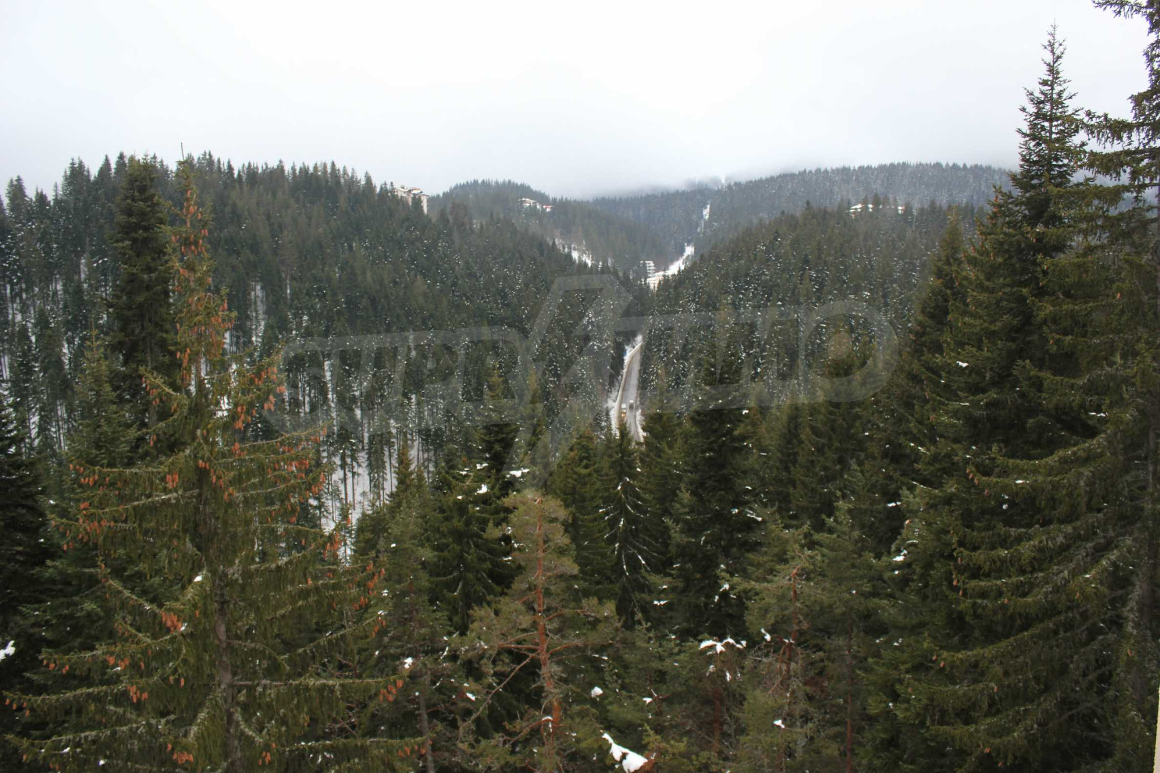 Mountain Lodge  24