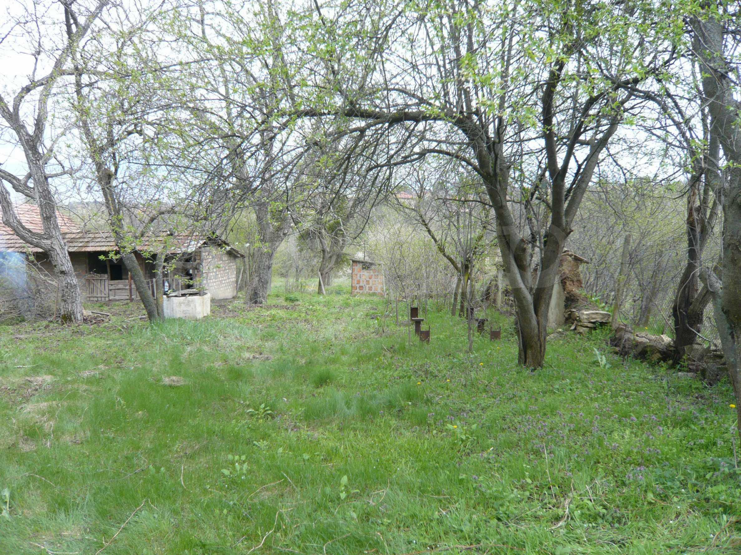 Haus mit großem Garten in einem gut entwickelten Dorf in der Nähe von Veliko Tarnovo 53