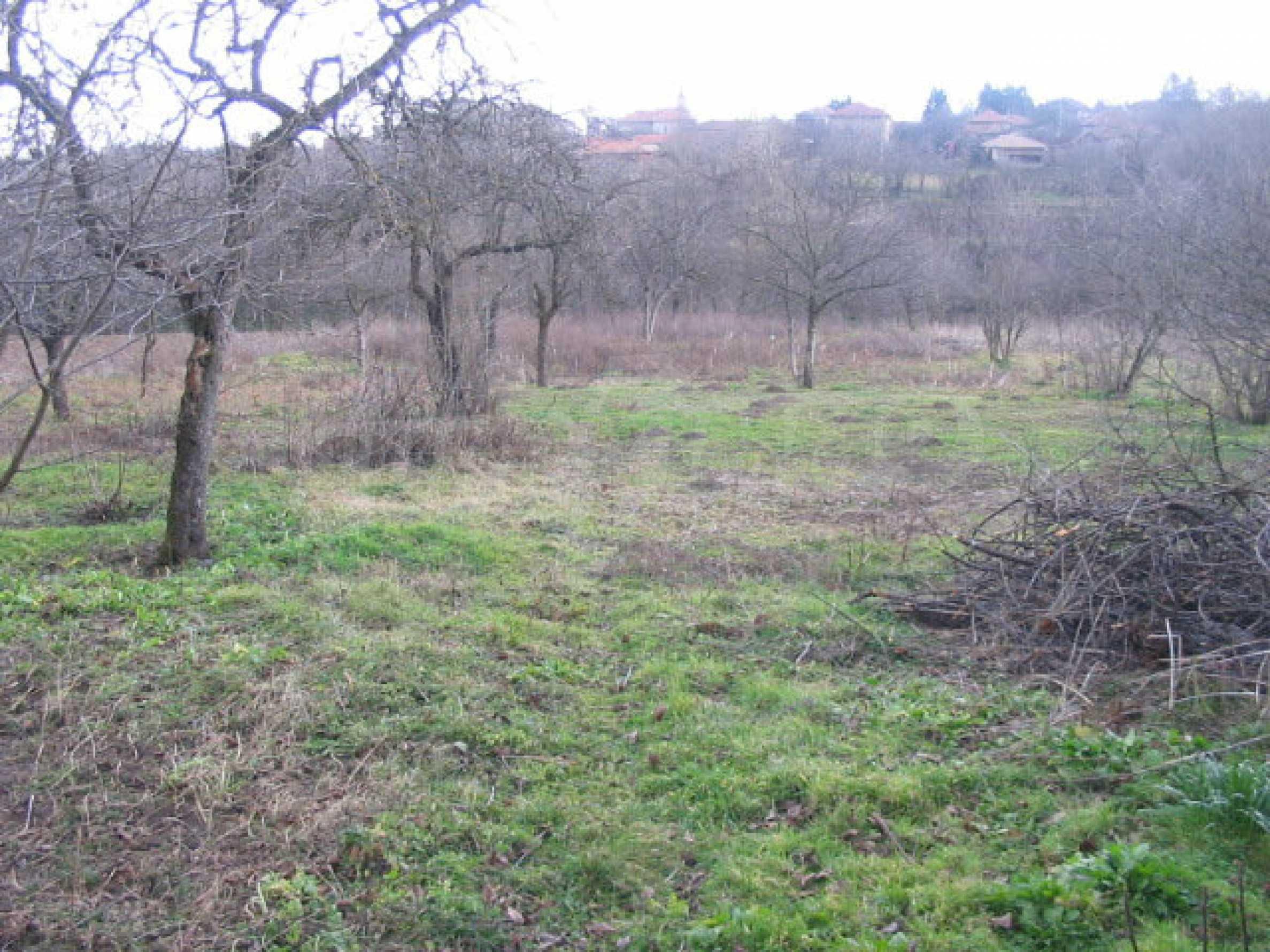 Haus mit großem Garten in einem gut entwickelten Dorf in der Nähe von Veliko Tarnovo 65