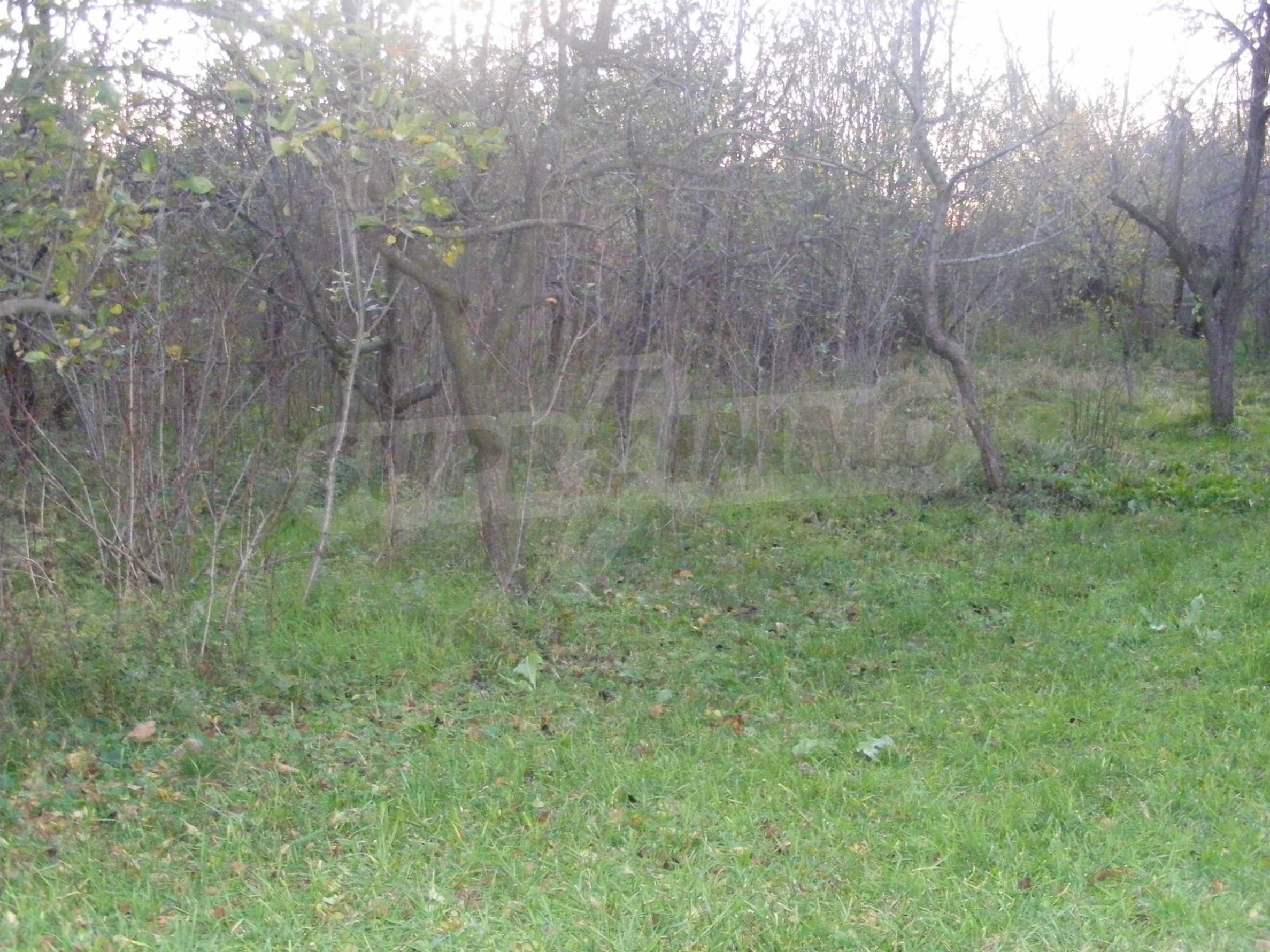 Nice detached house with garden 30 km from Montana and Lom 43