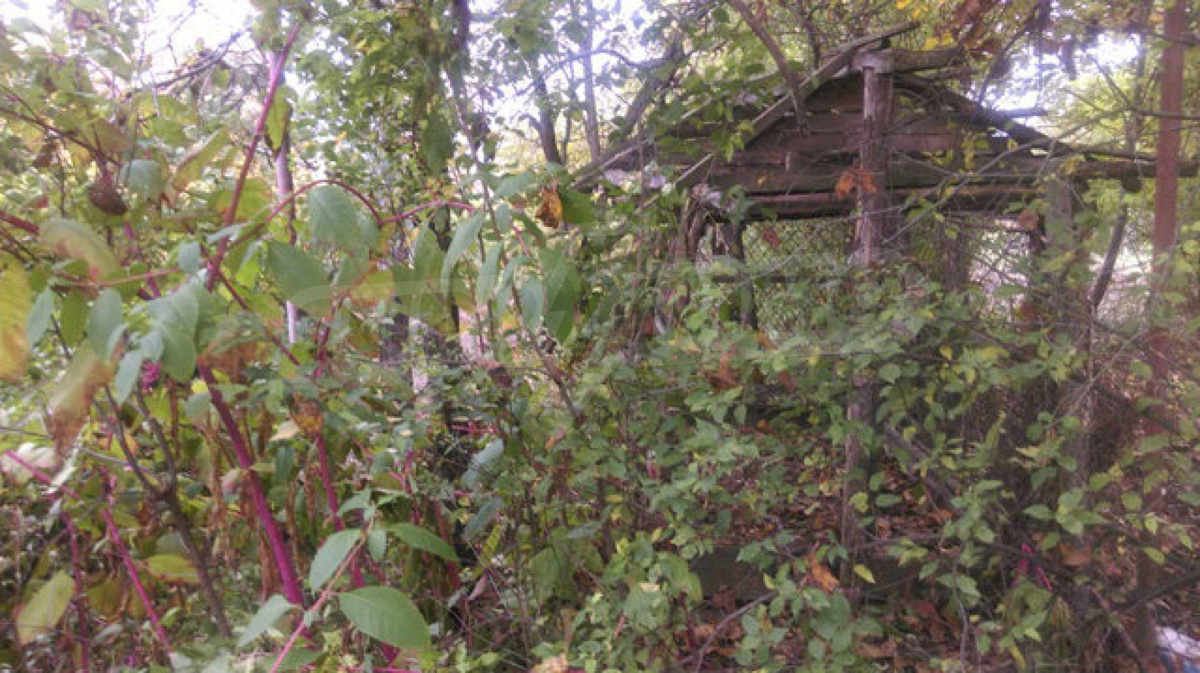 Backsteinhaus mit großem Garten in der Nähe von Mineralquellen und der Donau 63
