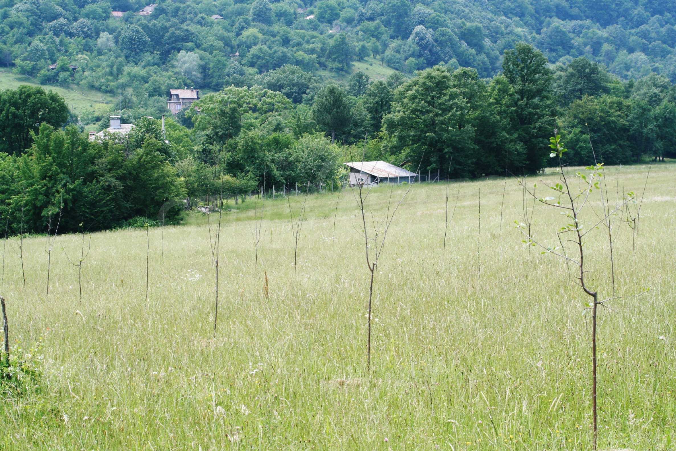 Spacious plot of agricultural land with potential near Gabrovo 10