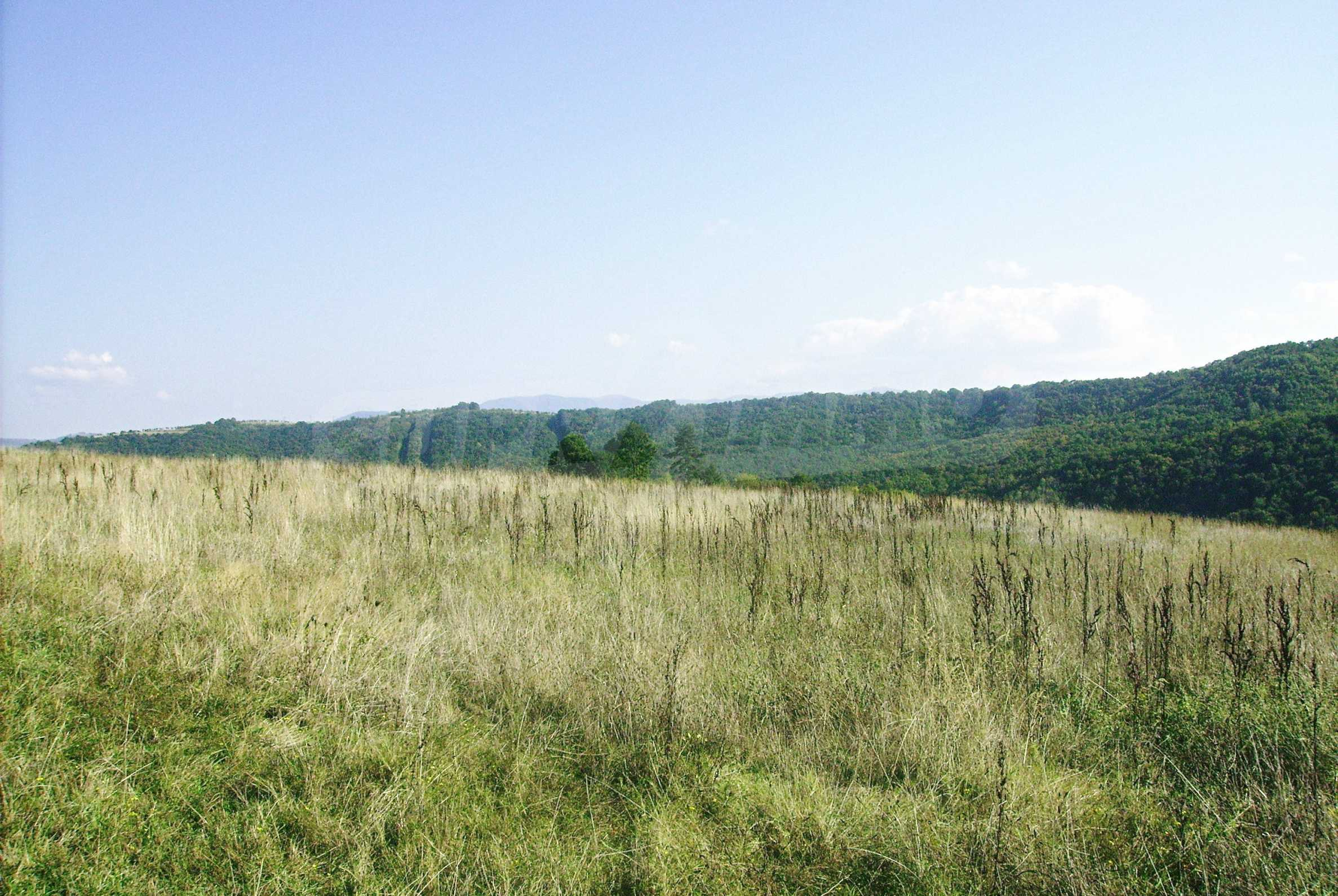 Spacious plot of agricultural land with potential near Gabrovo 11