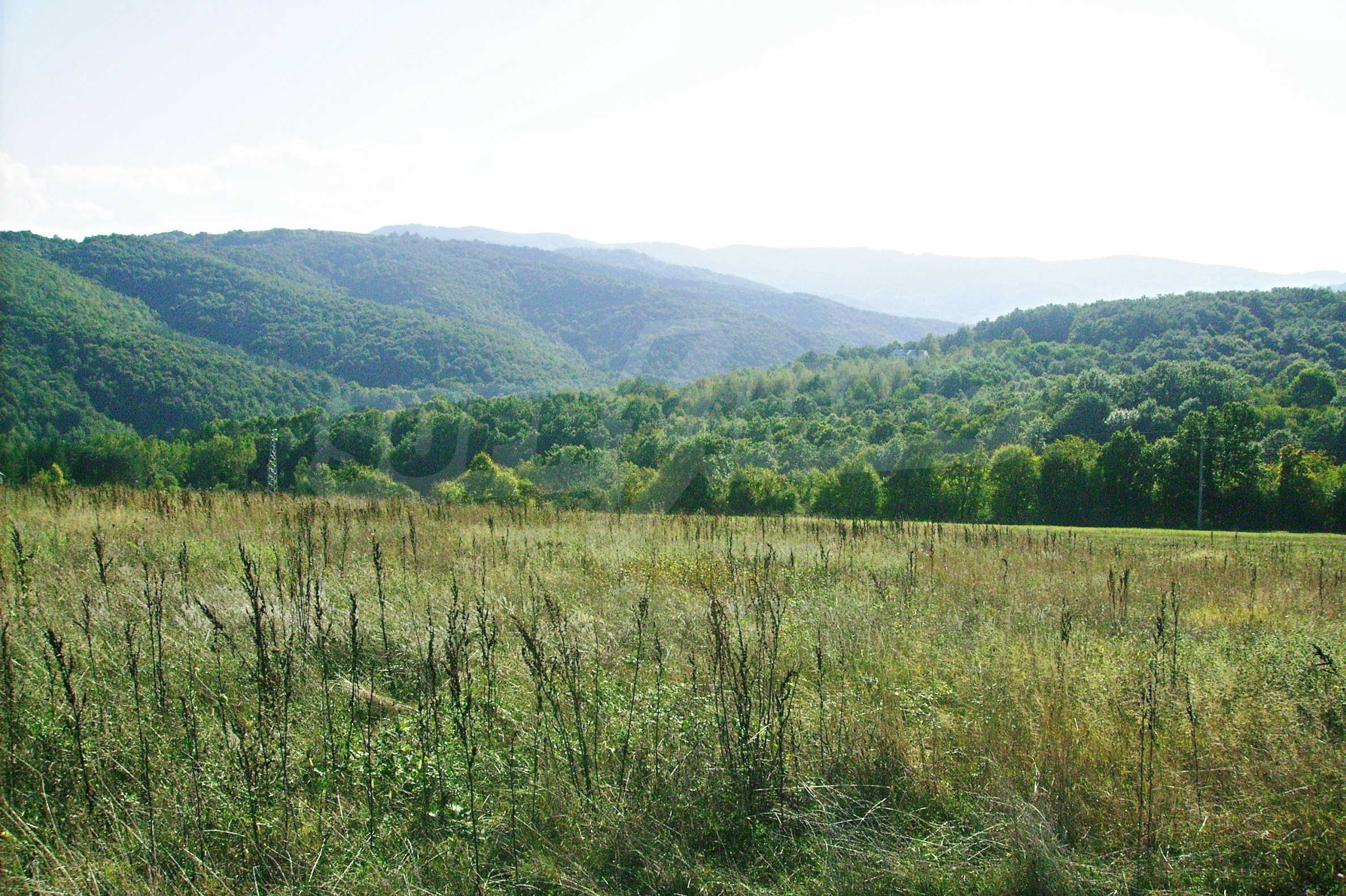 Spacious plot of agricultural land with potential near Gabrovo 12