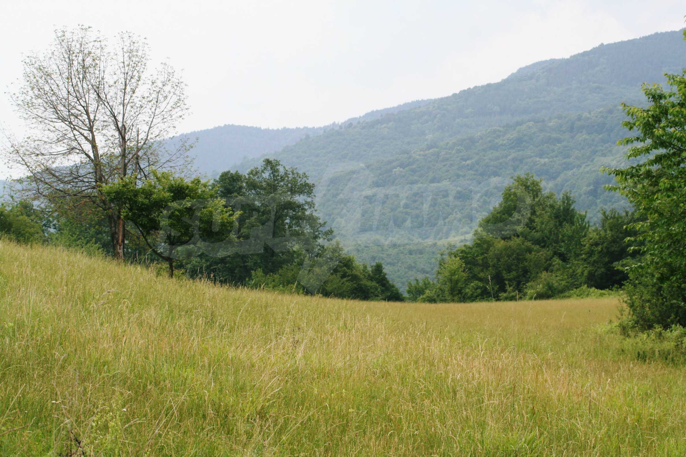 Spacious plot of agricultural land with potential near Gabrovo 20