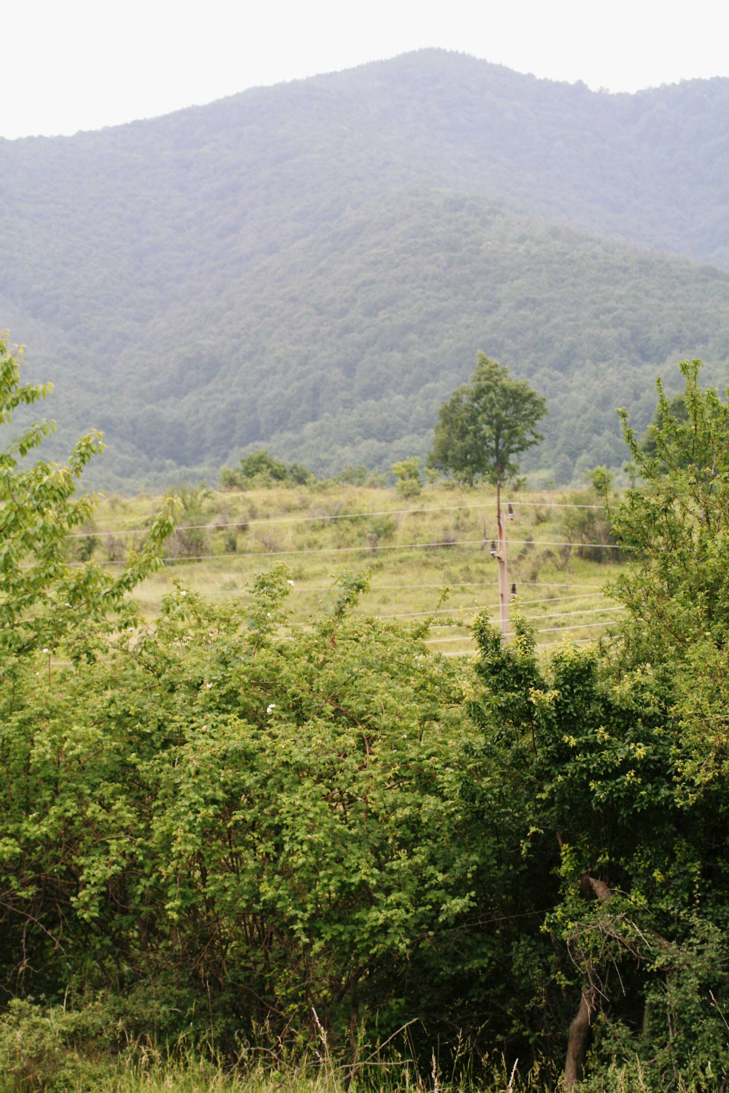 Spacious plot of agricultural land with potential near Gabrovo 21
