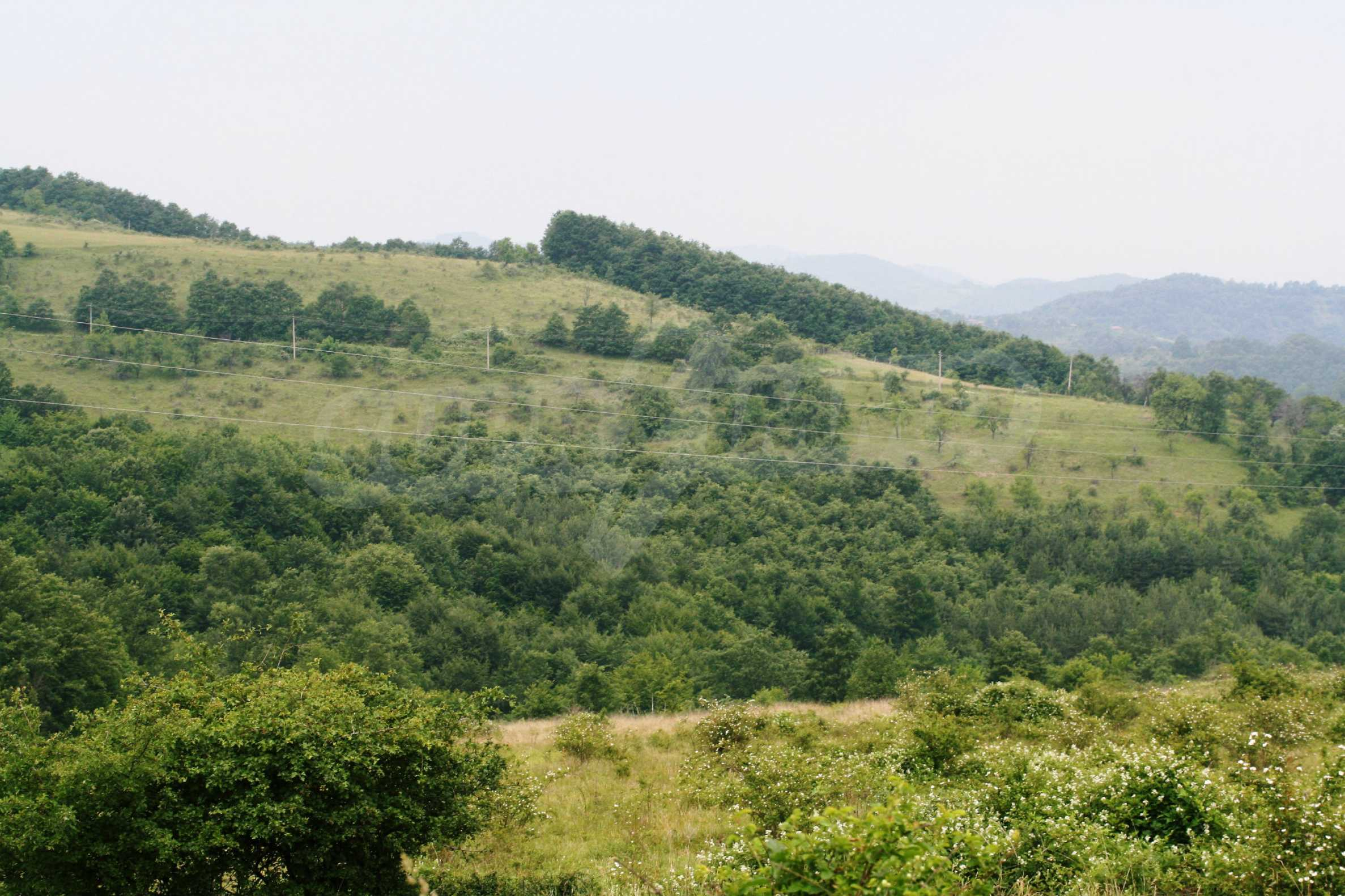 Spacious plot of agricultural land with potential near Gabrovo 25